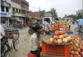 A colourful fruit market, UP 2011 - Citigroup