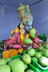 India mango