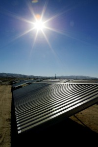 Investing in solar panels this year generated a loss