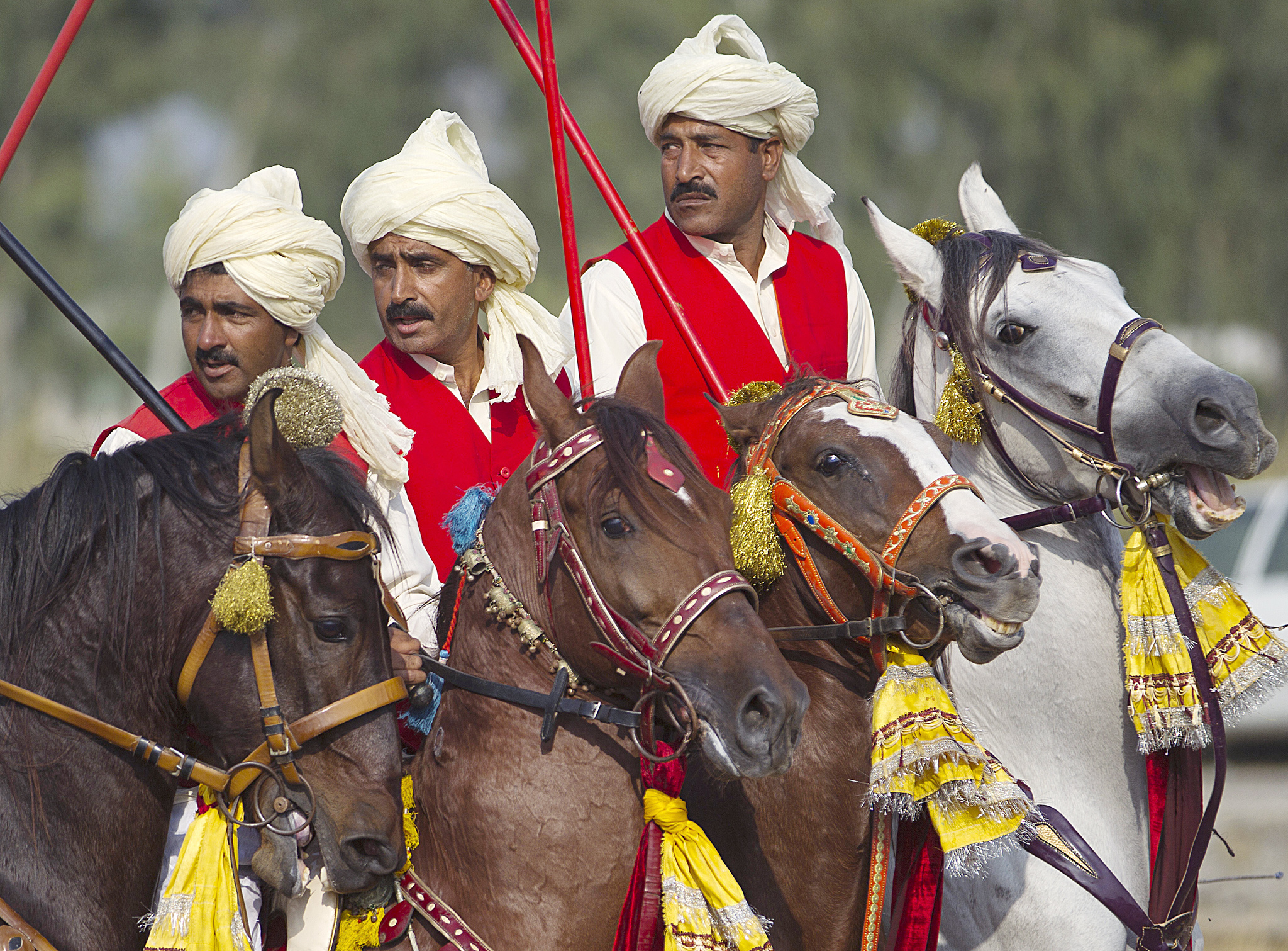 Pakistani horsemen get ready for a race during a tent pegging competition in Sangjani near Islamabad, Pakistan, Thursday, Oct. 24, 2013.(AP Photo/B.K. Bangash)