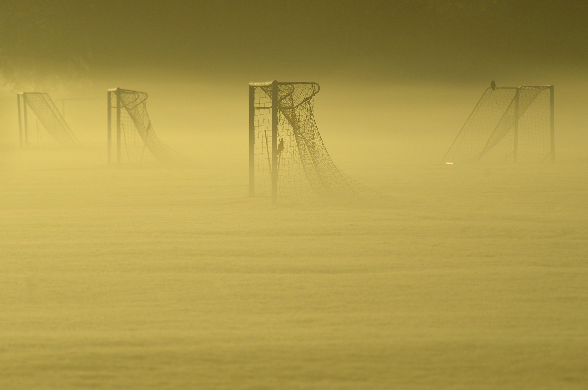 Soccer goal posts are seen in the autumn mist at Dukes Meadows in Chiswick, west London...Soccer goal posts are seen in the autumn mist at Dukes Meadows in Chiswick, west London November 13, 2013. REUTERS/Toby Melville