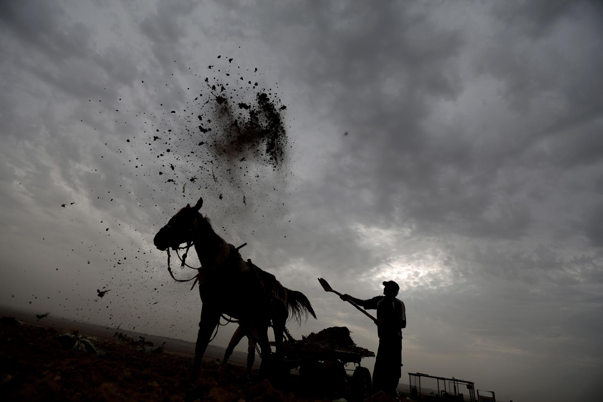 A Palestinian farmer works tossing compost at his field near the northern Gaza Strip refugee camp of Jabalia