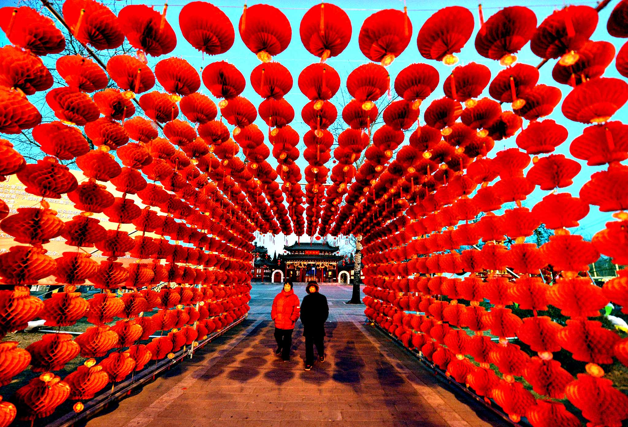 A couple walk beneath a display of lanterns for the Lunar New Year as China prepares for the Year of the Horse in Beijing on January 28, 2014.  China is preparing to welcome the Lunar New Year of the Horse which falls on January 31 and will see about 3.62 billion trips made by Chinese travelers during the 40-day Spring Festival travel period.