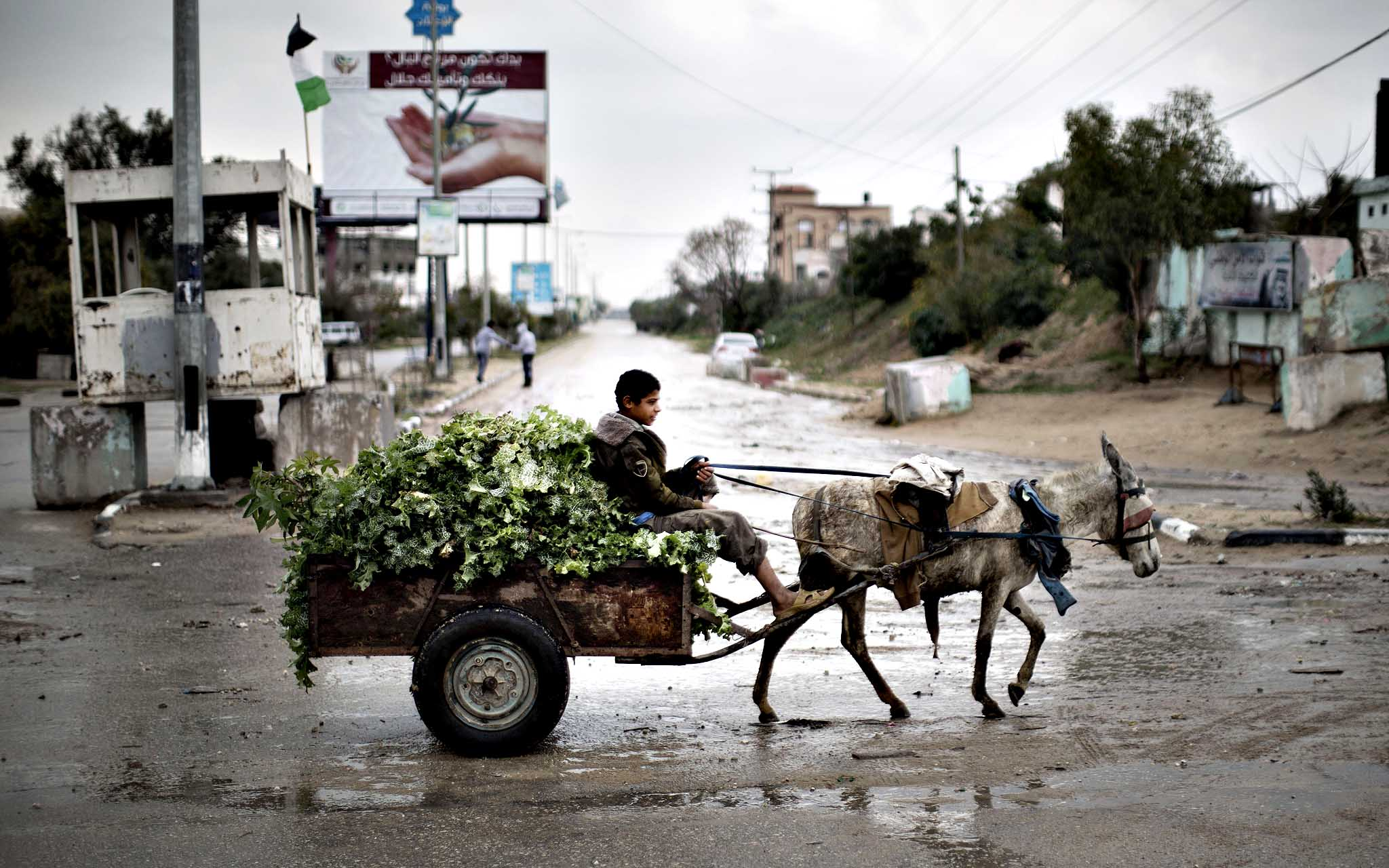 A Palestinian boy rides a donkey cart in Beit Hanun, northern Gaza Strip, on March 13, 2014. Israeli warplanes hit a number of targets in the Gaza Strip overnight in response to heavy Palestinian rocket fire into the Jewish state earlier.