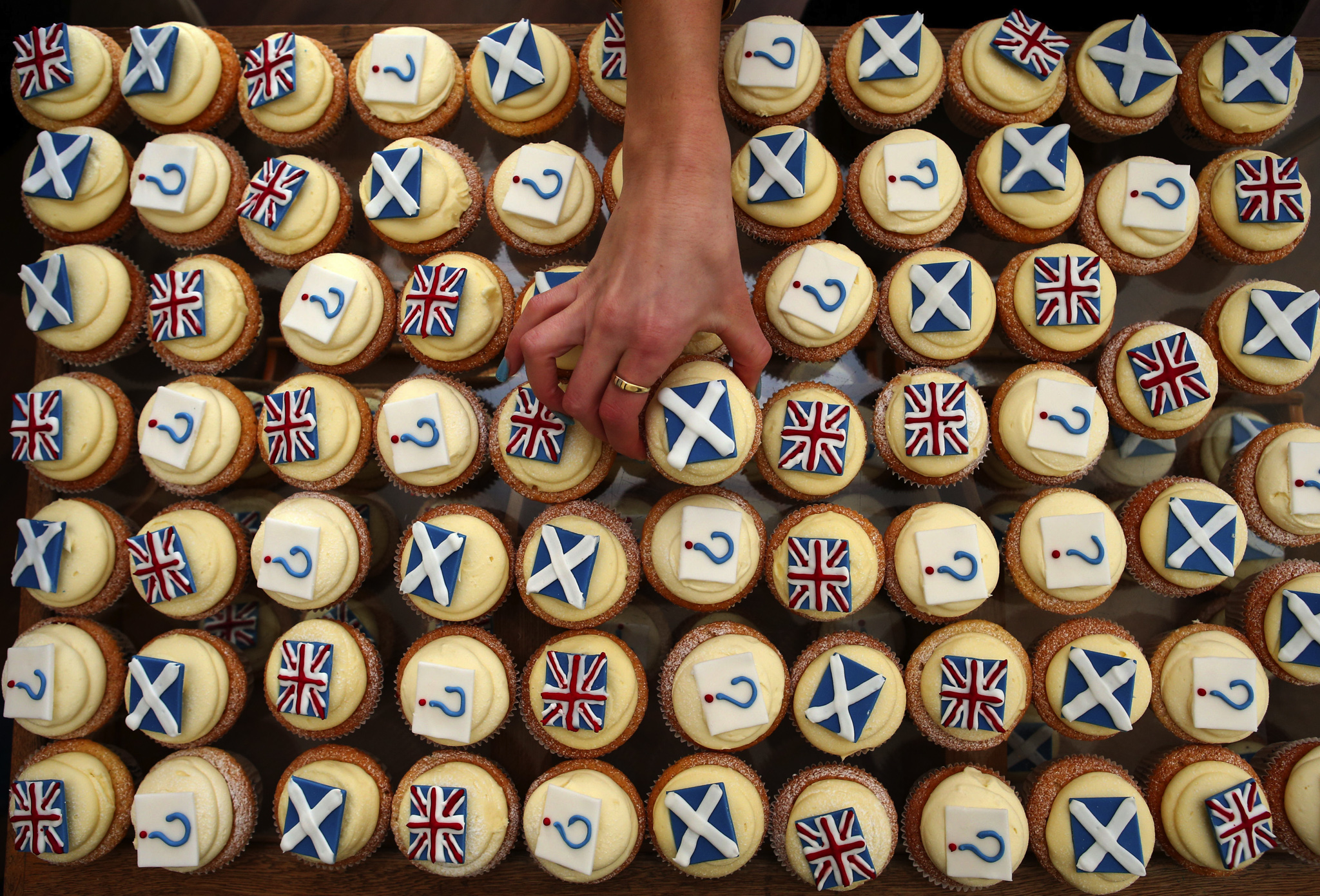 Edinburgh bakery Cuckoo's launch their own referendum opinion poll survey, where you can buy your Yes, No or Undecided cupcake and the weekly results will be published on the bakery's Facebook and Twitter sites