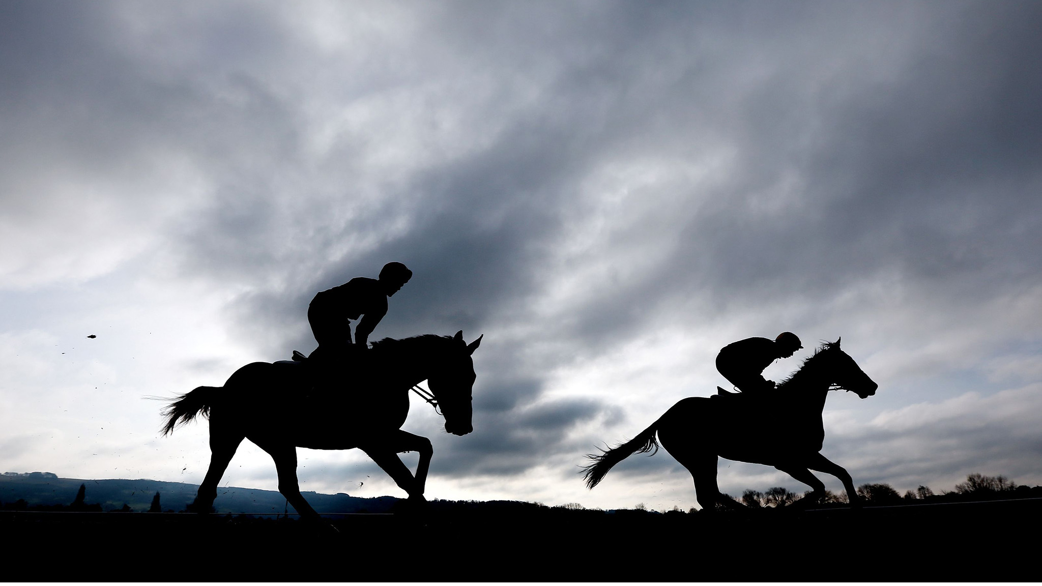 Horse Racing - 2014 Cheltenham Festival - Preview Day - Cheltenham Racecourse
