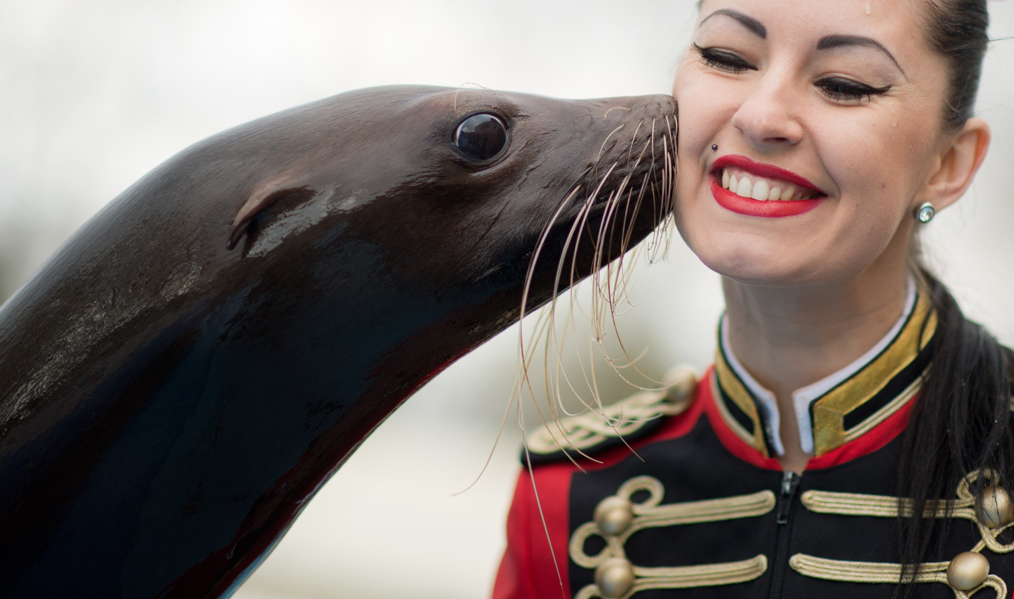 "Seal ""Steffi"" kisses circus assistant Victoria during a photo call at the Circus Charles Knie in Hanover, central Germany. The circus with 110 animals and 100 employees gives guest performances in Hanover until April 6, 2014."