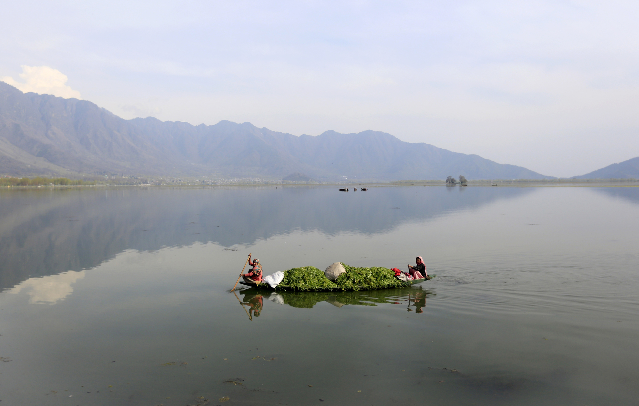 Kashmiri women row a boat filled with weed after cleaning the Dal Lake on Earth Day, on the outskirts of Srinagar, India, Tuesday, April 22, 2014. The weed-clogged Dal Lake is central to Kashmirís tourist trade and efforts are being made to rescue the lake. In the past two decades the lake has shrunk by more than half, according to environmental study reports. (AP Photo/Dar Yasin)