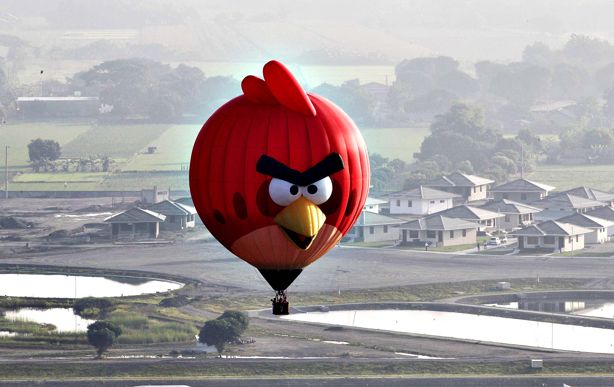 An Angry Bird inspired Hot Air balloon floats over rice fields and houses during the Philippine International Balloon festival in Lubao town, Pampanga province, north of Manila...An Angry Bird inspired Hot Air balloon floats over rice fields and houses during the Philippine International Balloon festival in Lubao town, Pampanga province, north of Manila April 10, 2014. An estimated 30 hot air balloons participated in the event which aims to promote tourism in the Southeast Asian country, local media reported.