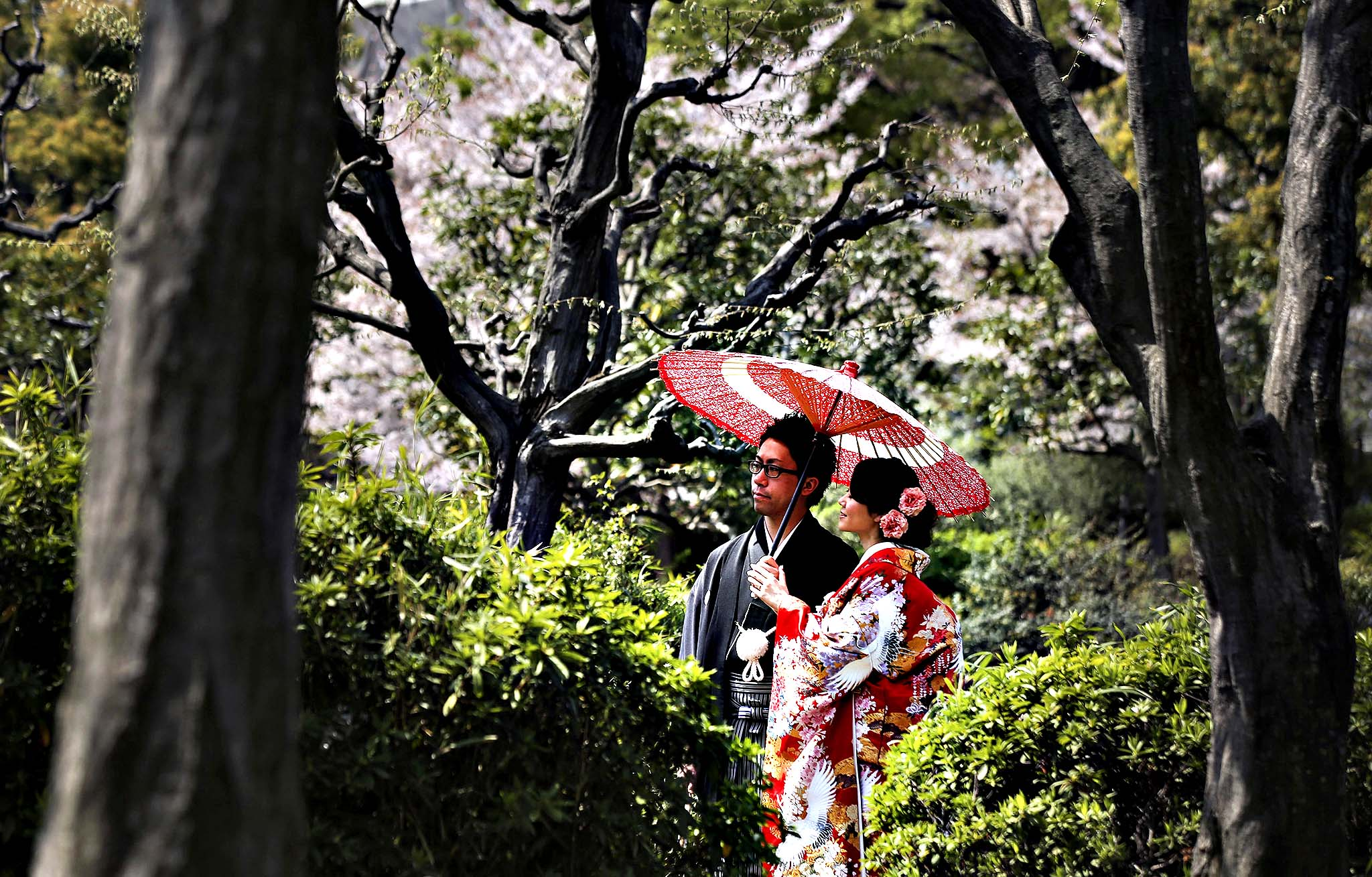 A couple with Japanese traditional clothing or kimono poses for a wedding photo session at a park in Tokyo, Tuesday, April 8, 2014.