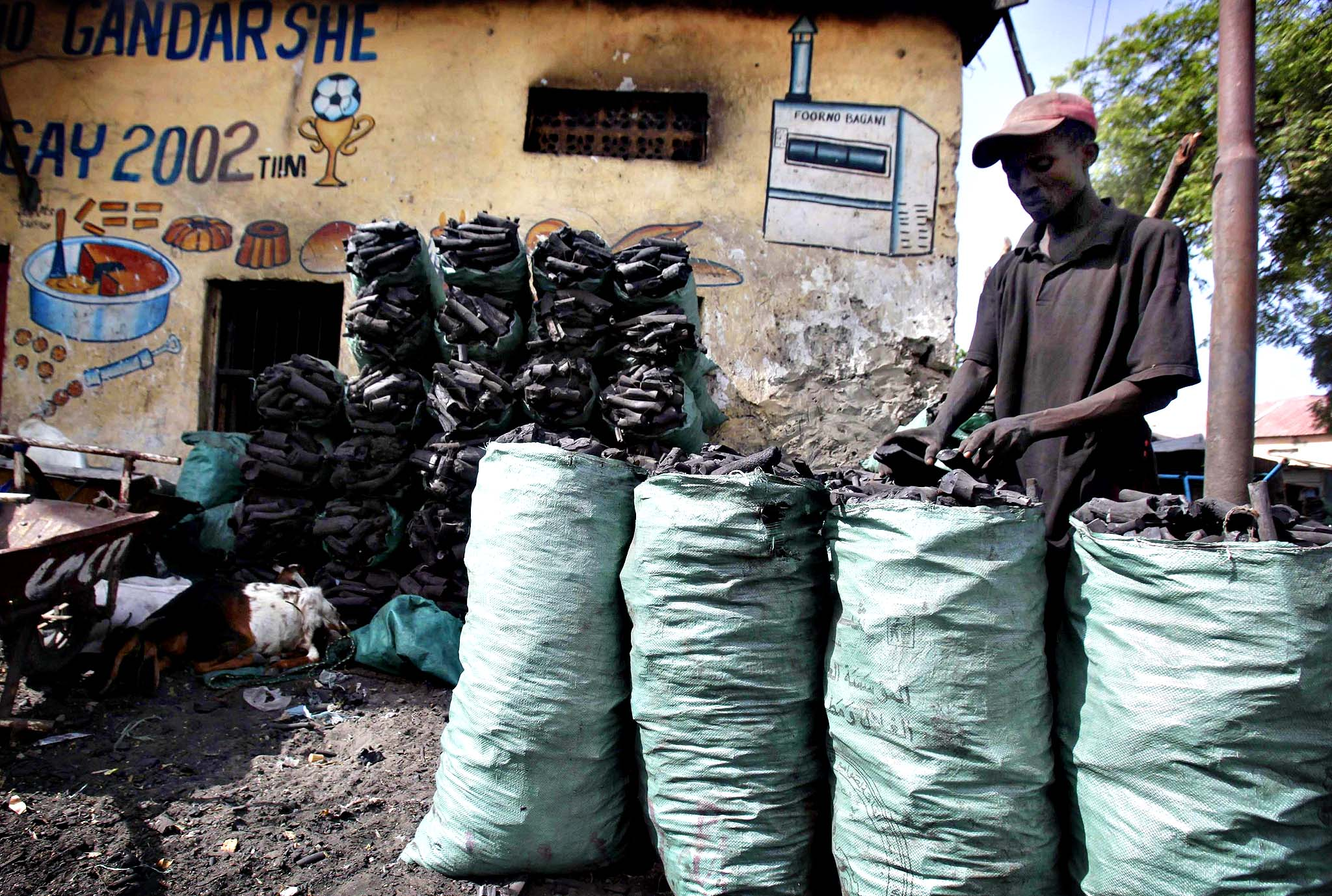 A trader arranges charcoal inside sacks along a street near the main Baraka market in Mogadishu, June 10, 2014.