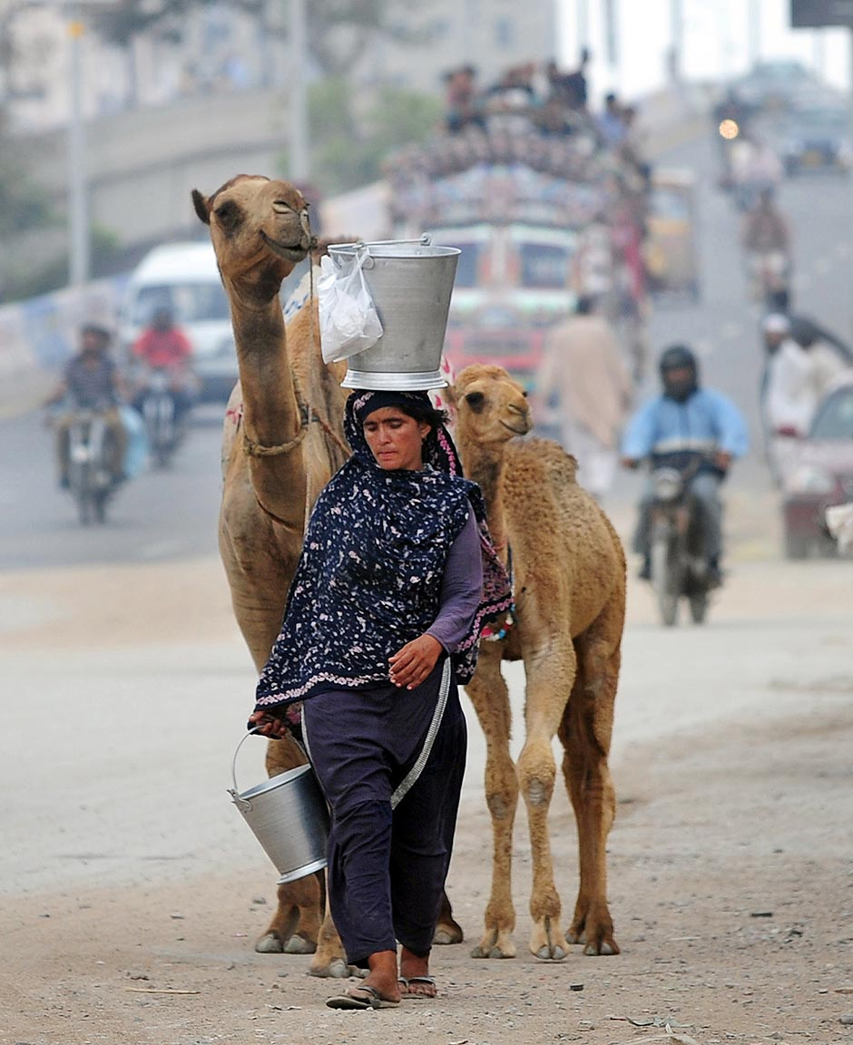 A Pakistani nomad woman carries a bucket