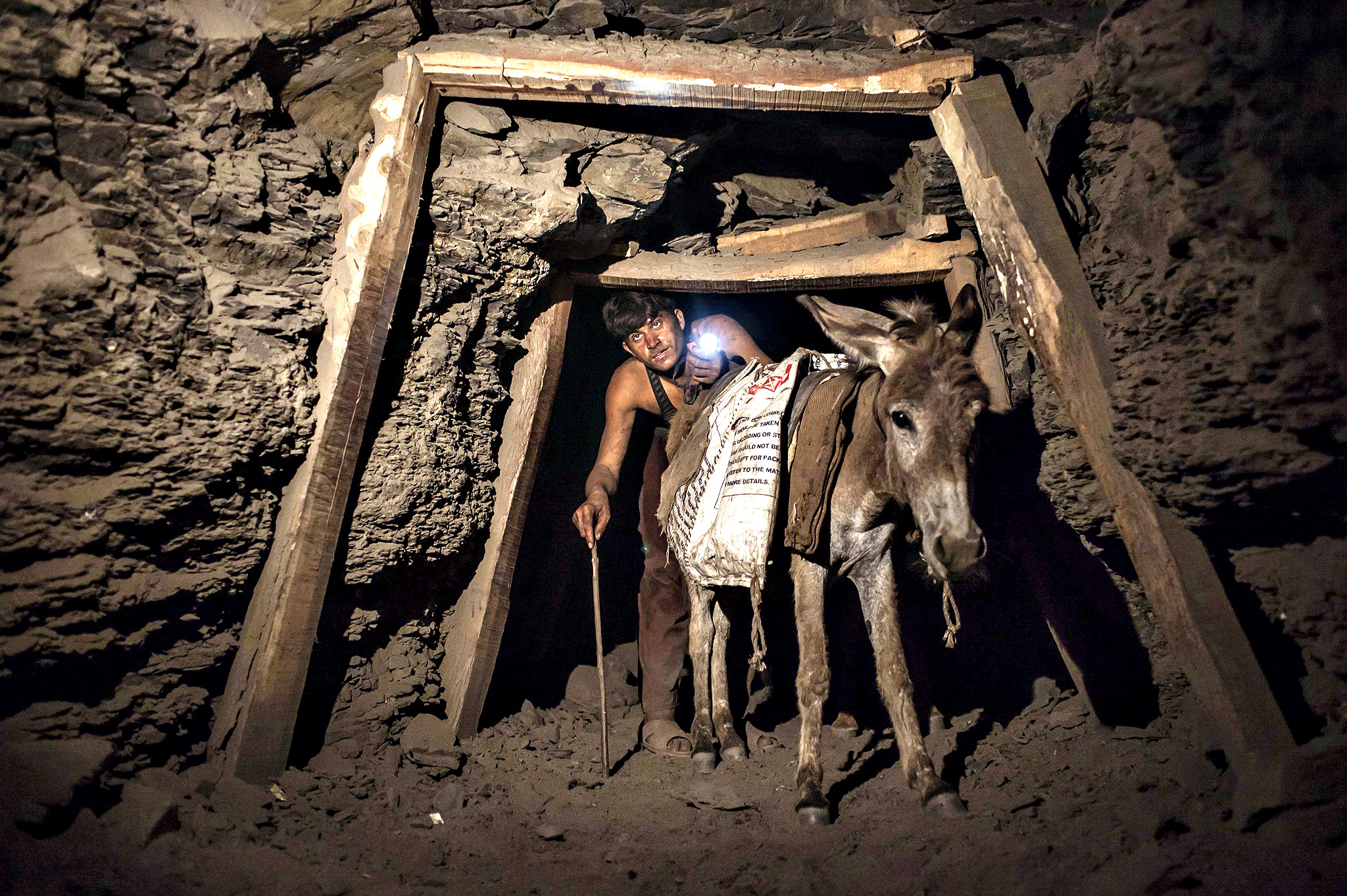A miner with a donkey makes his way through the low and narrow tunnel leading out of a coal mine in Choa Saidan Shah in Punjab province, April 29, 2014. Workers at this mine in Choa Saidan Shah dig coal with pick axes, break it up and load it onto donkeys to be transported to the surface. Employed by private contractors, a team of four workers can dig about a ton of coal a day, for which they earn around $10 to be split between them. The coalmine is in the heart of Punjab, Pakistan's most populous and richest province, but the labourers mostly come from the poorer neighbouring region of Khyber Pakhtunkhwa. Picture taken April 29, 2014.