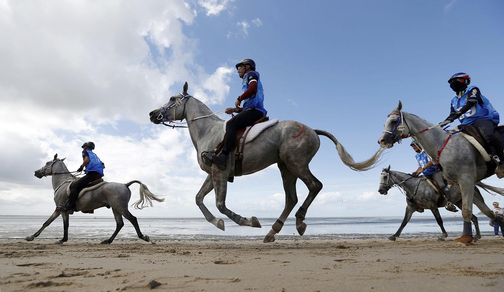 Competitors compete on the beach during the Endurance Competition at the World Equestrian Games at Dragey...Competitors compete on the beach during the Endurance Competition at the World Equestrian Games at Dragey in Normandy, western France, August 28, 2014.  REUTERS/Regis Duvignau (FRANCE - Tags: SPORT EQUESTRIANISM ANIMALS)