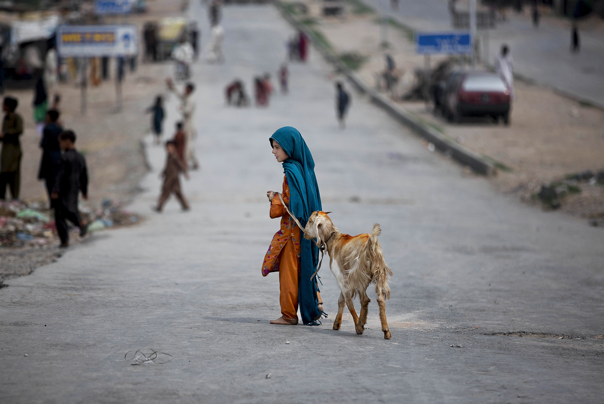 A girl drags her goat heading back home through a main road empty of traffic and full of children playing, after being blocked by the Pakistani police with shipping containers, on the outskirts of Islamabad, Pakistan, Thursday, Aug. 14, 2014. Roads leading to the Capital are being blocked in run up to announced protests by cricketer-turned-politician Imran Khan and anti-government cleric Tahir-ul-Qadri. Both men want the government to step down and new elections to be held. (AP Photo/Muhammed Muheisen)