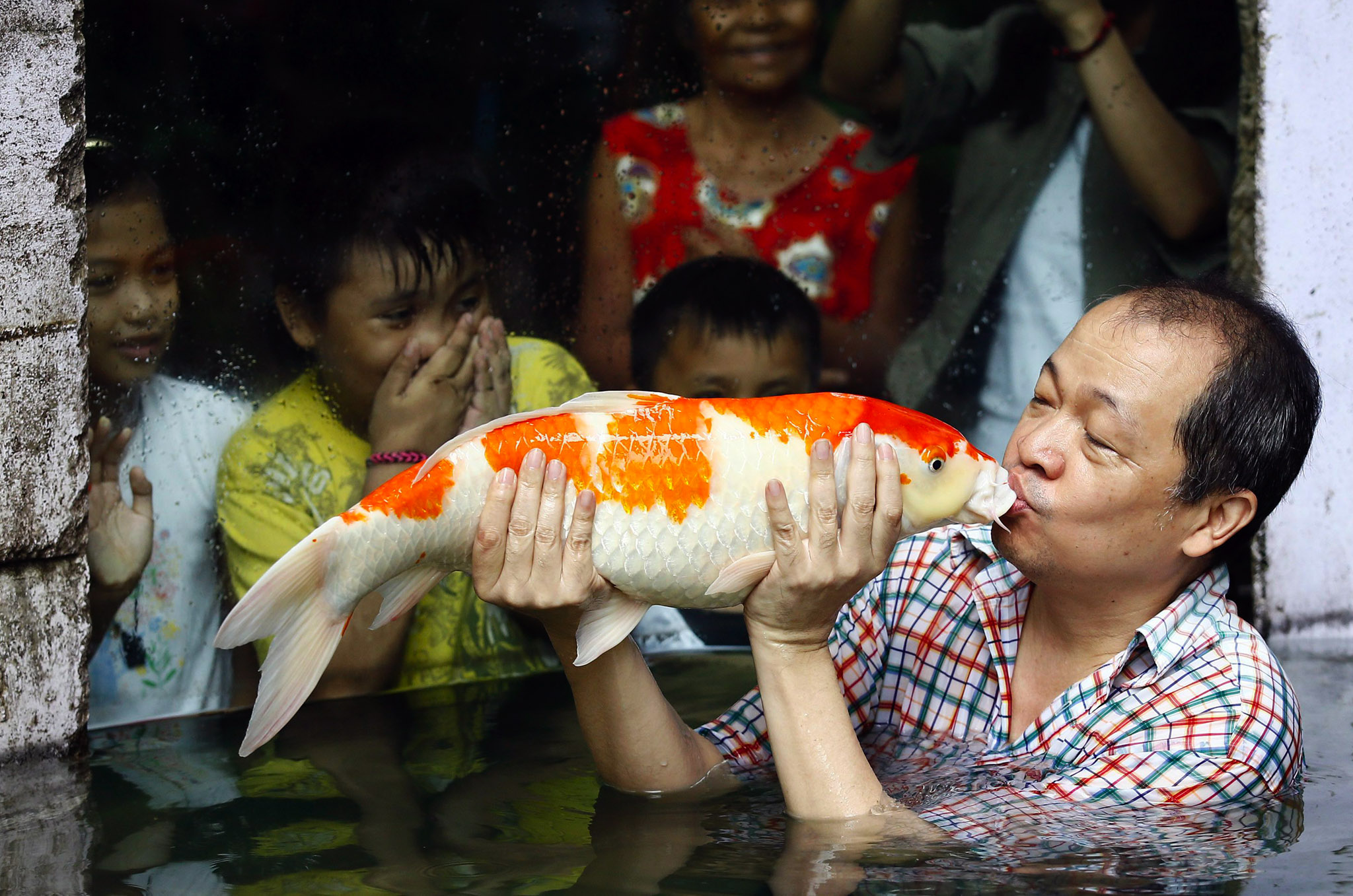 Filipino zoo owner Manny Tangco kisses his Japanese koi carp inside the Malabon Zoo, north of Manila, Philippines. The zoo is one of the largest in the Philippines, borne out of a backyard hobby and passion for animals.