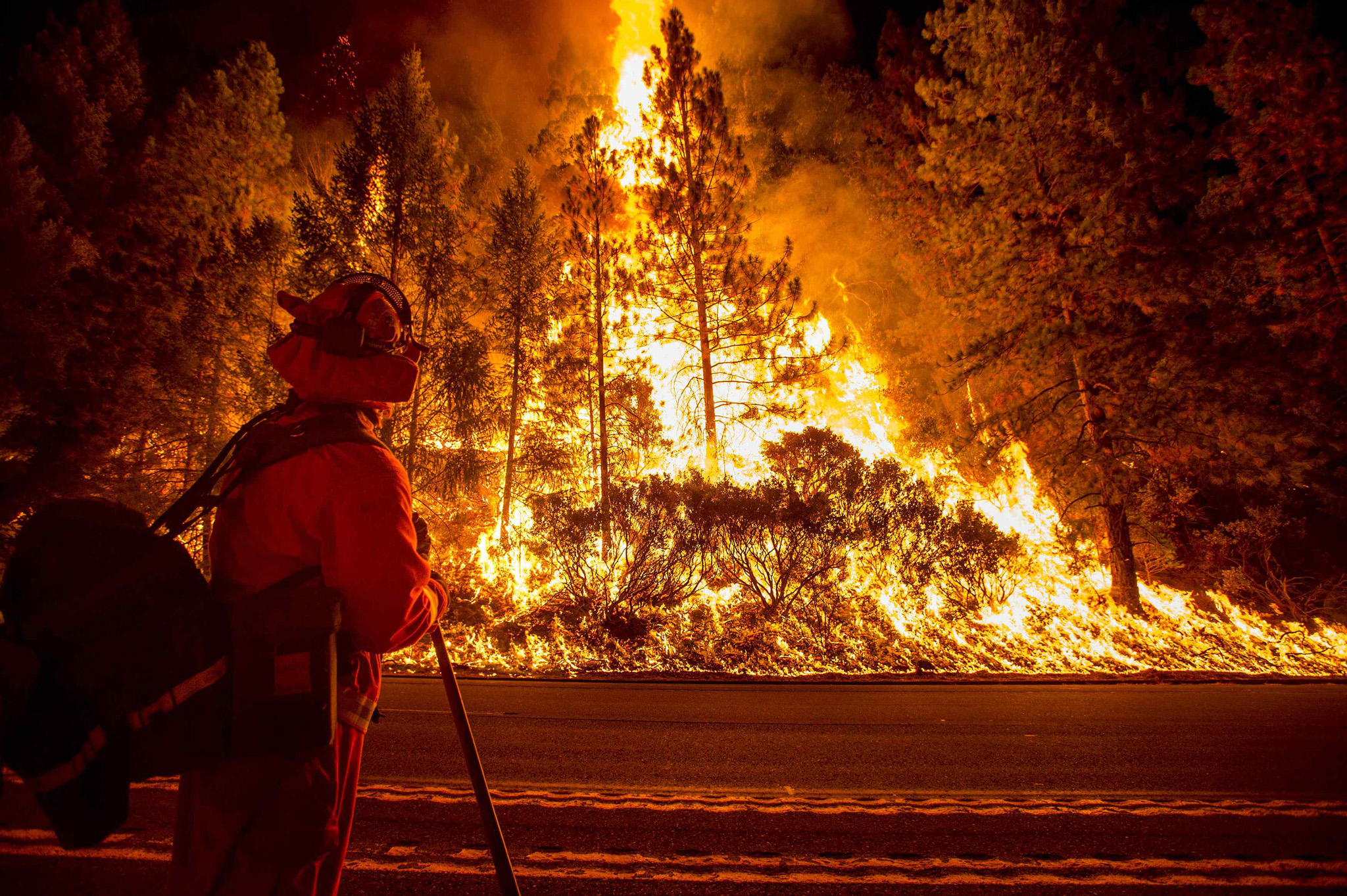 A firefighter battling the King Fire watches as a backfire burns along Highway 50 in Fresh Pond...A firefighter battling the King Fire watches as a backfire burns along Highway 50 in Fresh Pond, California September 16, 2014. The fire led officials to call on about 400 people to evacuate from areas threatened by the blaze, Cal Fire spokeswoman Alyssa Smith said. It has charred more than 11,500 acres (4,654 hectares) and was 5 percent contained on Tuesday.  REUTERS/Noah Berger  (UNITED STATES - Tags: DISASTER ENVIRONMENT)