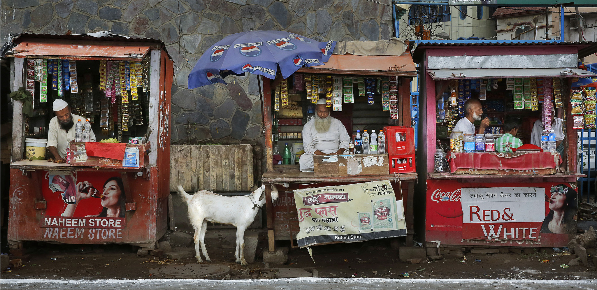 A goat is tied to one of the roadside tobacco shops, as owners wait for customers, in New Delhi, India ,Wednesday, Sept. 3, 2014.