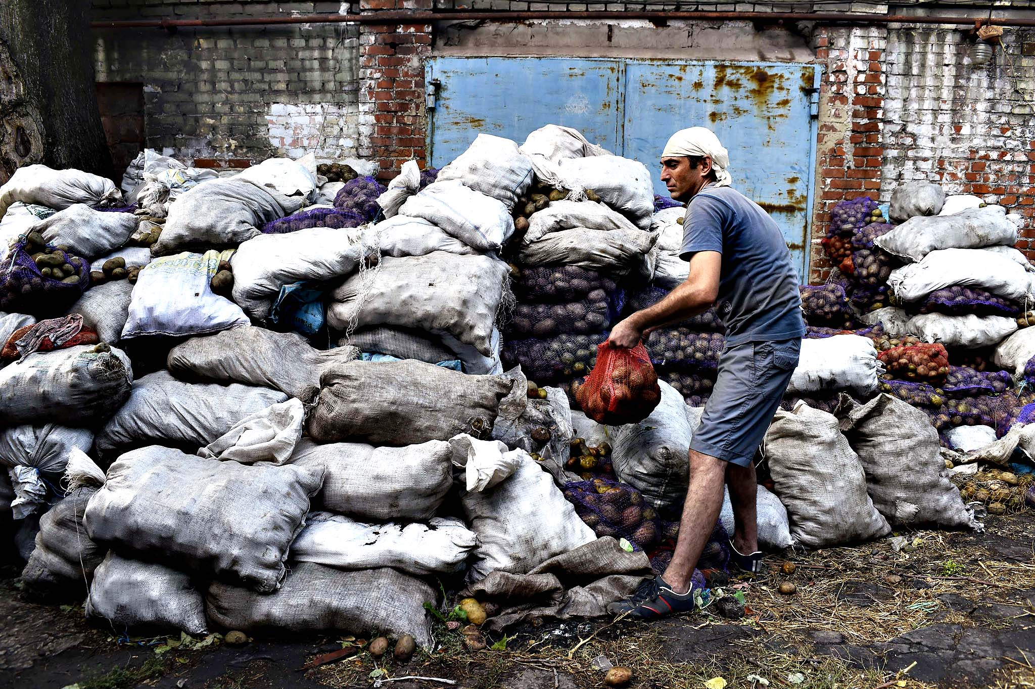 A volunteer holds a bag of potatoes at a Red Cross center before distributing it to a citizen in the key southeastern port city of Mariupol, on September 8, 2014. European leaders were set to unveil punishing new sanctions on Russia after weekend fighting in Ukraine imperilled a fragile truce aimed at halting a bloody pro-Kremlin uprising.