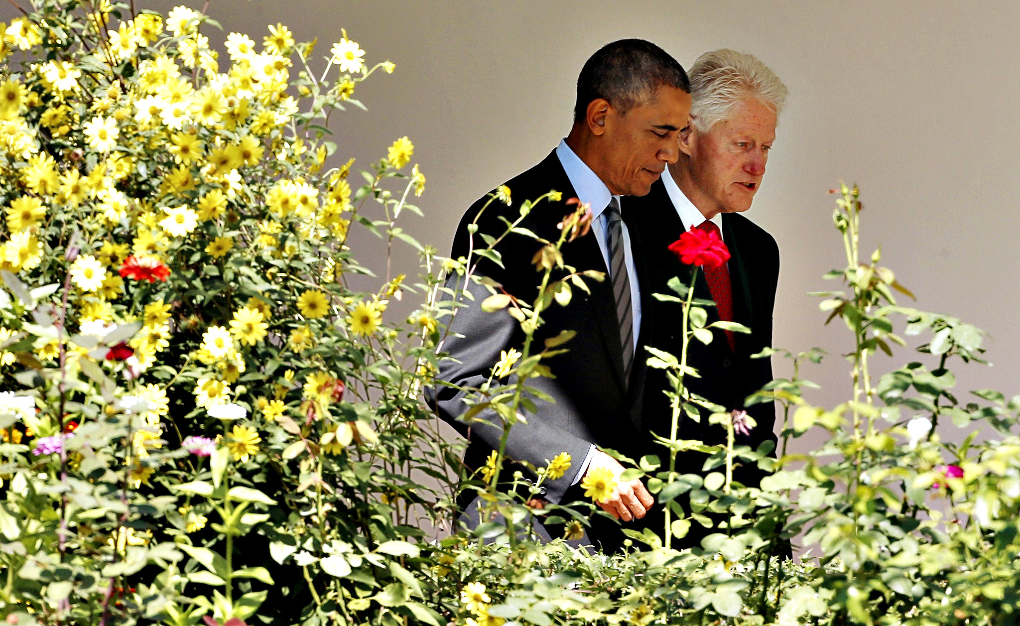 U.S. President Barack Obama and former President Bill Clinton walk past the Rose Garden to host an event marking the 20th anniversary of the national service program AmeriCorps at the White House in Washington September 12, 2014. In 1993, Clinton signed the bill that created AmeriCorps.