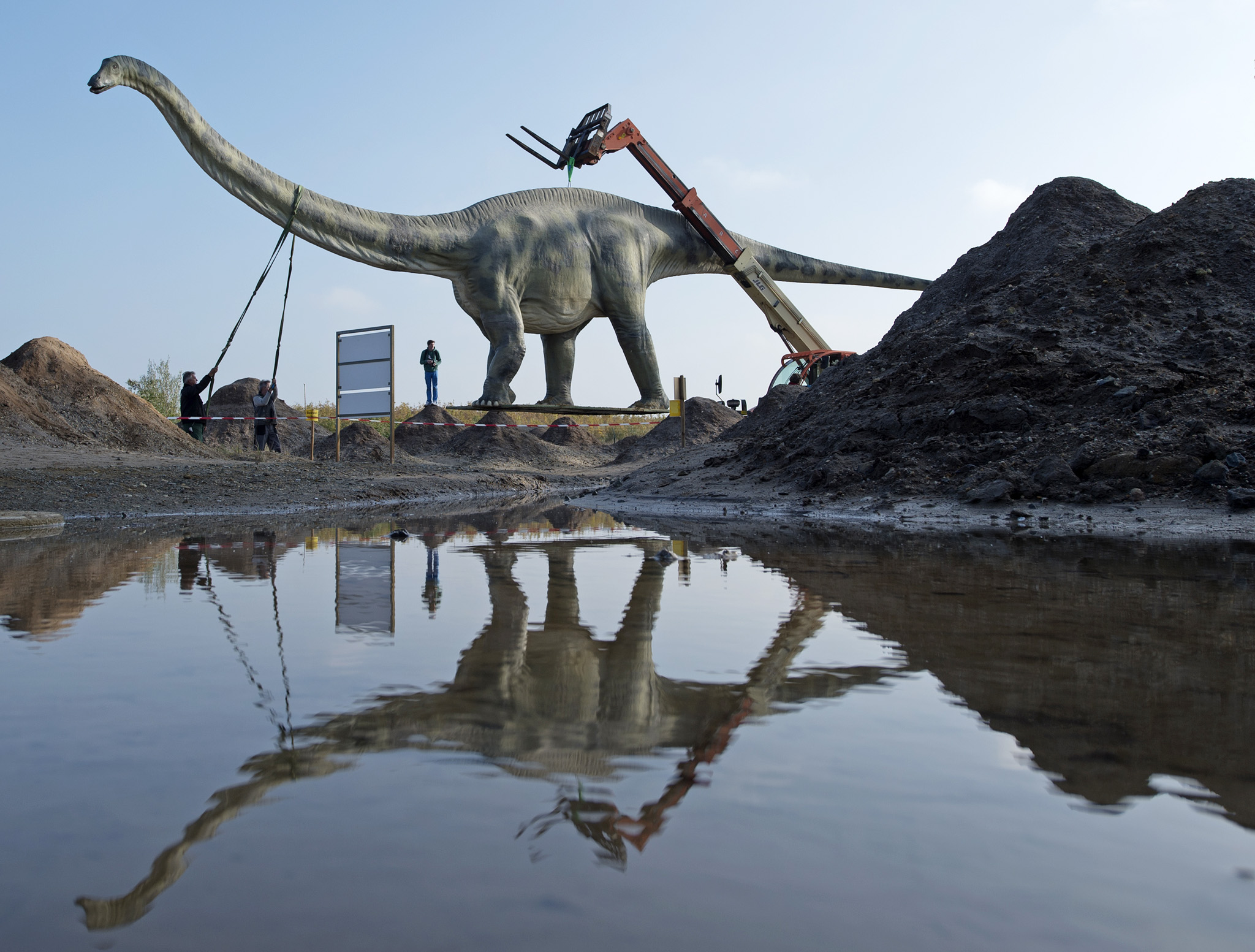 Workers transport a model of a dinosaur  at the exhibition 'World of Dinosaurs'  at a former lignite surface mining area   in Grosspoesna near Leipzig, central Germany, Wednesday, Oct. 29, 2014. More  than 50  exhibits of different species of dinosaurs  are on display  until  Nov. 30, 2014.  (AP Photo/Jens Meyer)