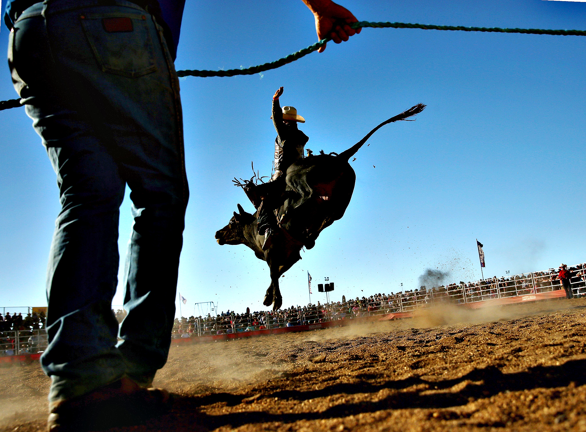 A rider holds on as a bull tries to throw him during the Bull Ride Spectacular on the first day of the 2014 Deni Ute Muster at the Play on the Plains Festival grounds on October 3, 2014 in Deniliquin, Australia.