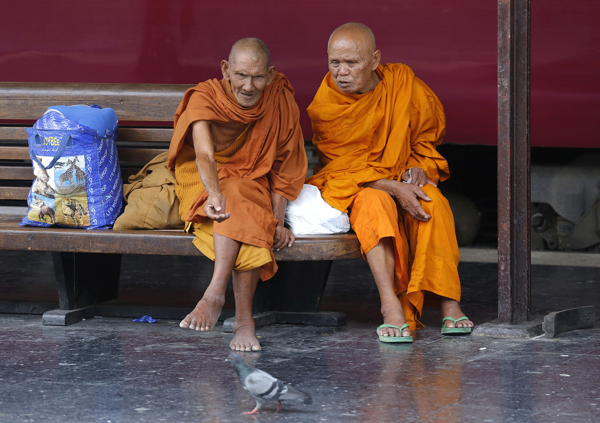 Thai Buddhist monks call a pigeon on platform at Hua Lampong railway station in Bangkok, Thailand, Thursday, Nov. 13, 2014.(AP Photo/Sakchai Lalit)