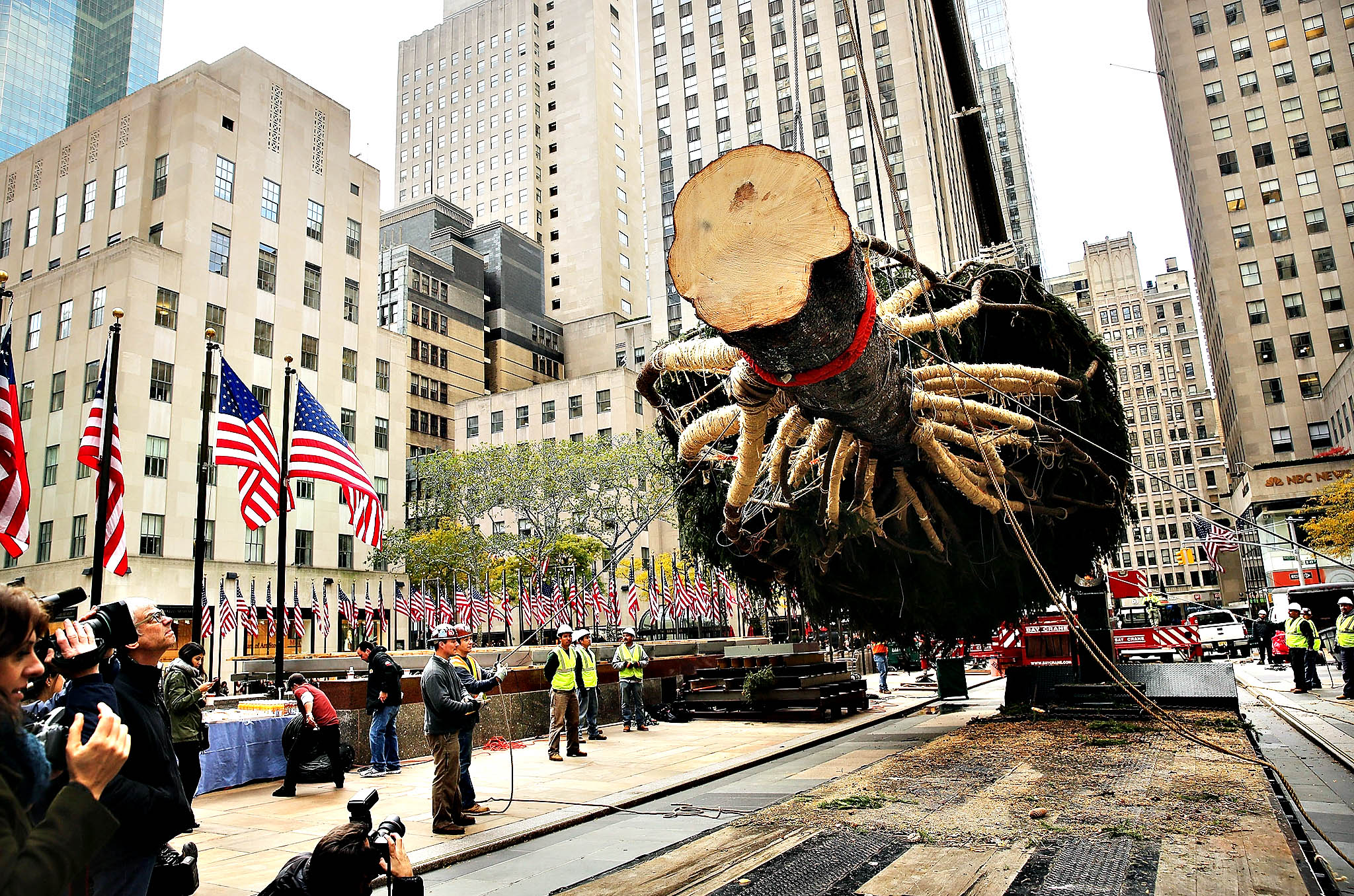 Rockefeller Center's Christmas tree, an 85-foot Norway spruce from central Pennsylvania, is hoisted onto a platform on November 7, 2014 in New York City. The 13-ton tree will be illuminated on December 3 in a ceremony that's been held since 1933. The owners of the land that the tree was cut from intend to donate its wood to build homes for Habitat for Humanity following the Christmas season.