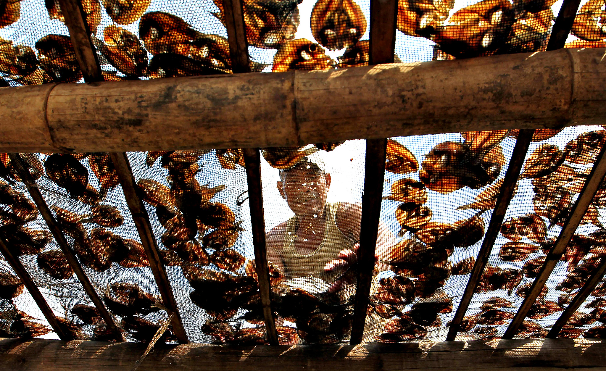 Filipino fisherman Estelito Marijuan, 58, arranges dried fish at a fishing village during the celebration of World Fisheries day in Paranaque city, south of Manila, Philippines, 21 November 2014. World Fisheries day is celebrated every year on 21 November to highlight the importance of maintaining the world's fisheries.