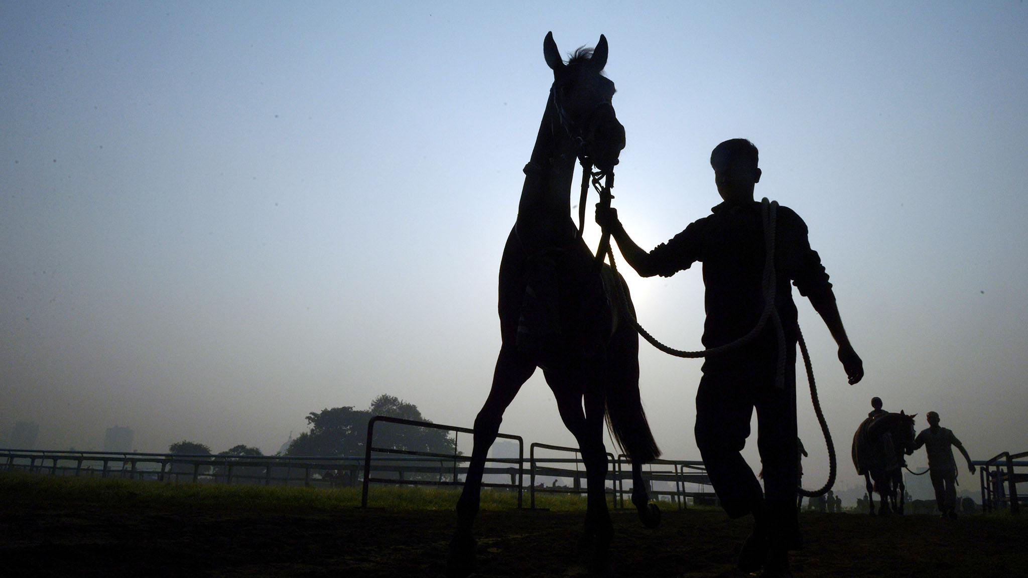 An Indian jockey leads his horse off the track after attending a practice session