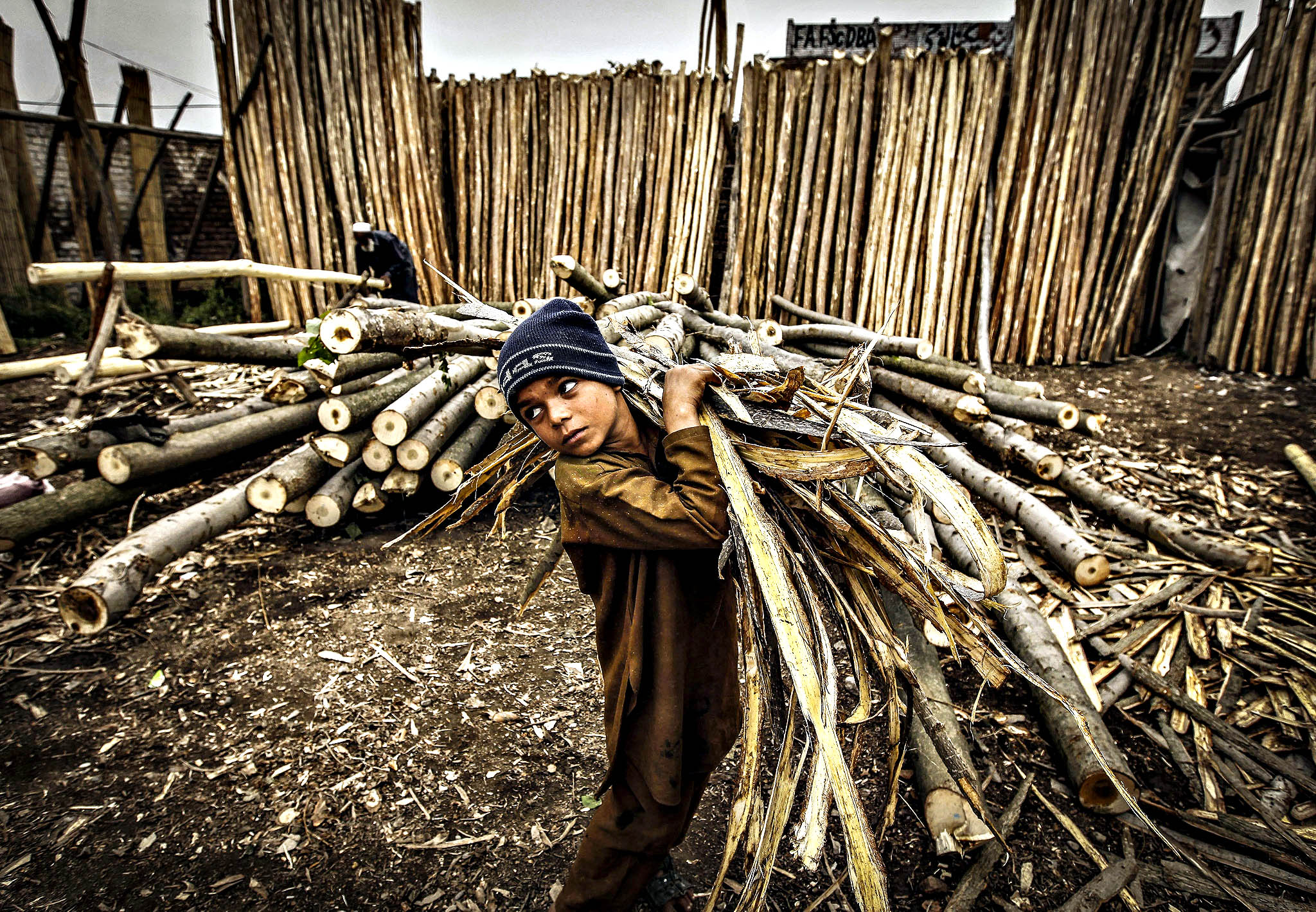 A young laborer works at a woods shop in Peshawar, Pakistan, 10 November 2014. Fire wood is a big source of domestic fuel in rural Pakistan where during winters, domestic consumers face acute shortage of Natural Gas.