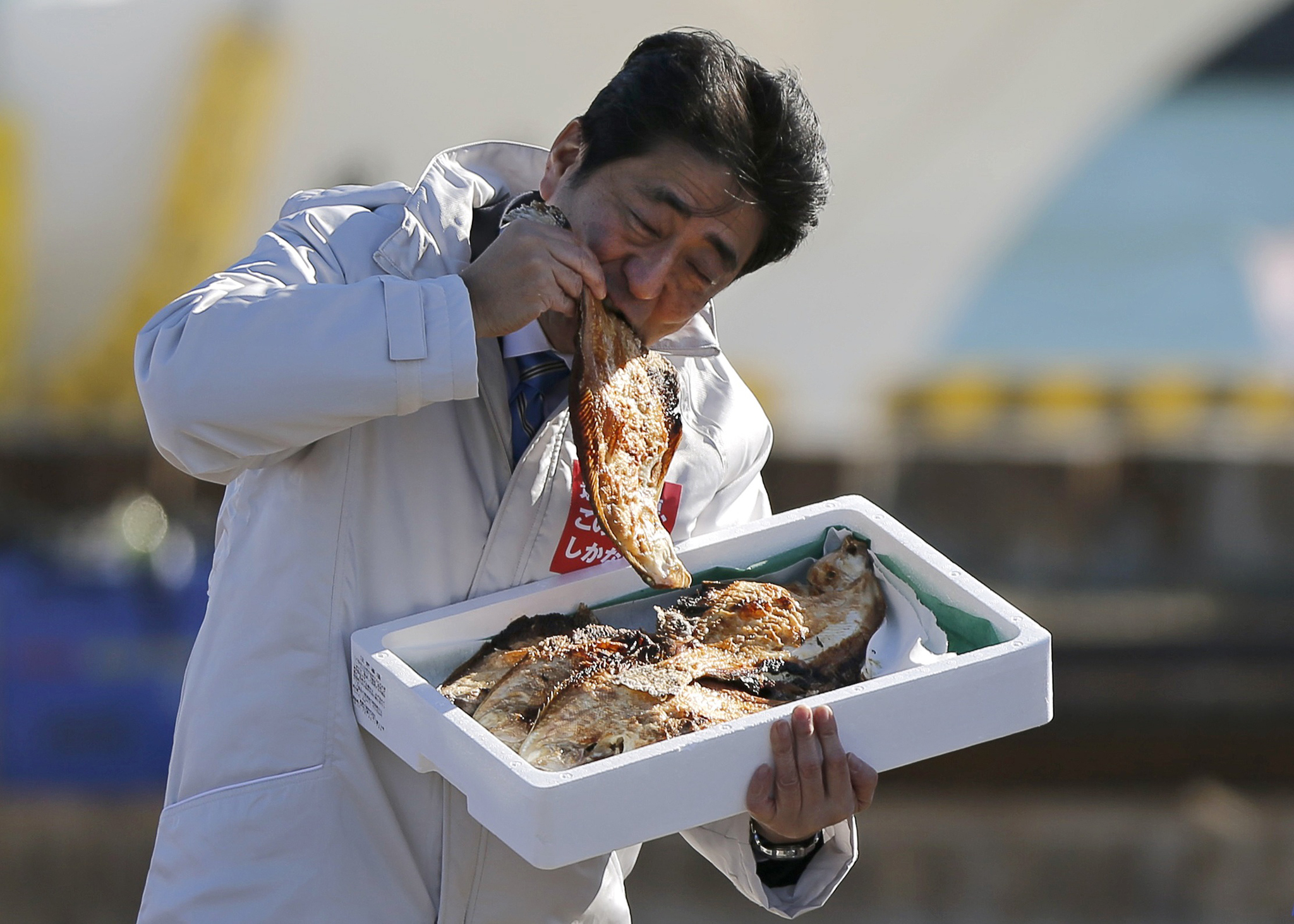 Japan PM Abe eats a local grilled fish during his official campaign kick-off for the Dec 14 lower house election, in Soma...Japan's Prime Minister Shinzo Abe, who is also leader of the ruling Liberal Democratic Party (LDP), eats a local grilled fish during his official campaign kick-off for the December 14 lower house election, at the Soma Haragama fishing port in Soma, Fukushima prefecture, December 2, 2014.    REUTERS/Issei Kato (JAPAN - Tags: POLITICS ELECTIONS FOOD TPX IMAGES OF THE DAY)