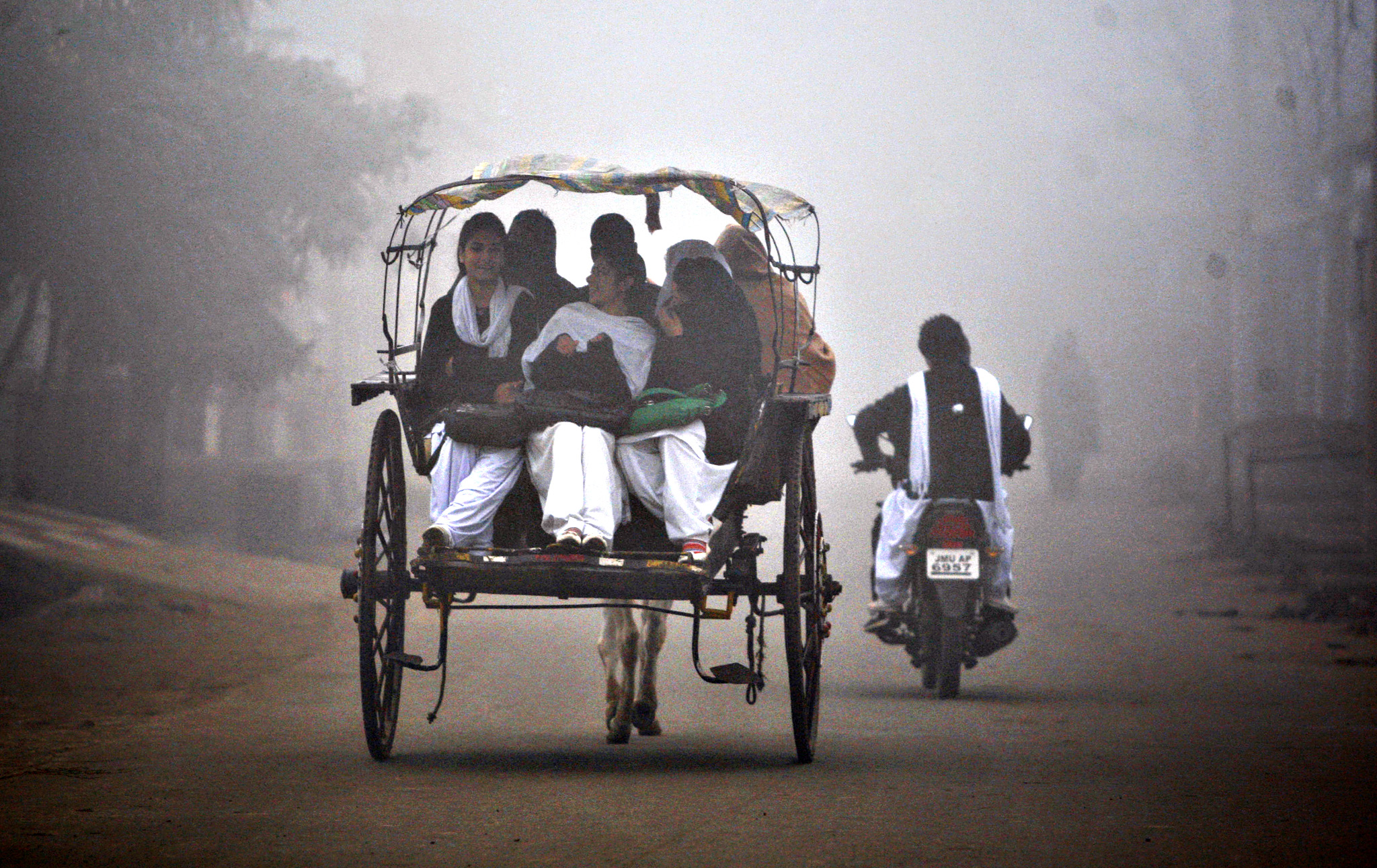 Indian students travel on a horse cart surrounded by fog in Jammu, India, Thursday, Dec.18, 2014. As winter sets in, thick fog engulfs most of north India early mornings.