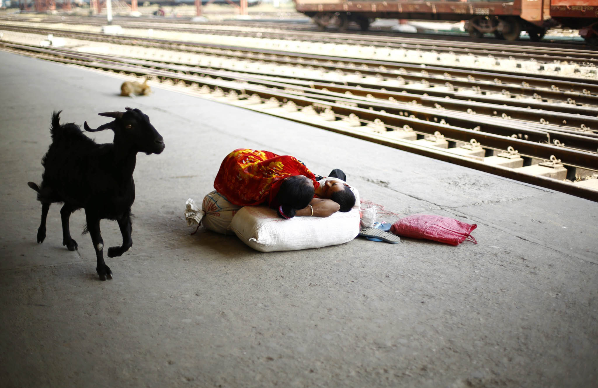 Strike in Bangladesh ...epa04585515 A woman sleeps with her child at the platform during the country wide strike called by the Bangladesh Nationalist Party (BNP) at the Kamlapur railway station in Dhaka, Bangladesh, 26 January 2015. Violence erupted in different parts of the country after former prime minister Khaleda Zia called a nationwide transport blockade on 05 January, the first anniversary of a controversial election that her Bangladesh Nationalist Party (BNP) and allies boycotted. According to official estimates, at least 30 people have since been killed in firebomb attacks on passenger buses, cars and trucks as vehicles plied on highways in defiance of the blockade