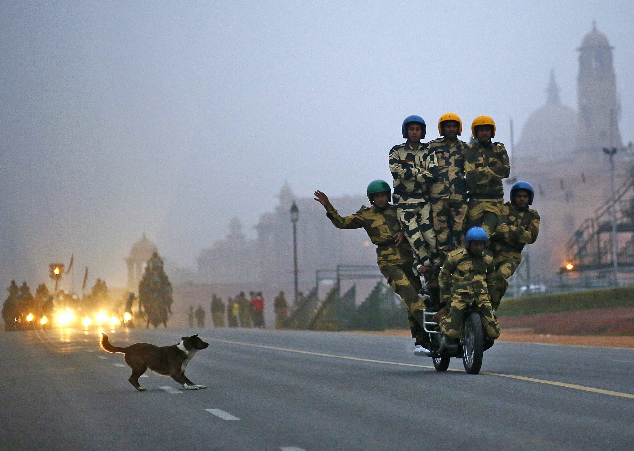 "A stray dog chases India's BSF Daredevils motorcycle riders as they perform during a rehearsal for the Republic Day parade on a winter morning in New Delhi...A stray dog chases India's Border Security Force (BSF) ""Daredevils"" motorcycle riders as they perform during a rehearsal for the Republic Day parade on a winter morning in New Delhi January 9, 2015. India will celebrate its annual Republic Day on January 26. REUTERS/Anindito Mukherjee (INDIA - Tags: ANIMALS ANNIVERSARY MILITARY POLITICS TRANSPORT ENVIRONMENT)"