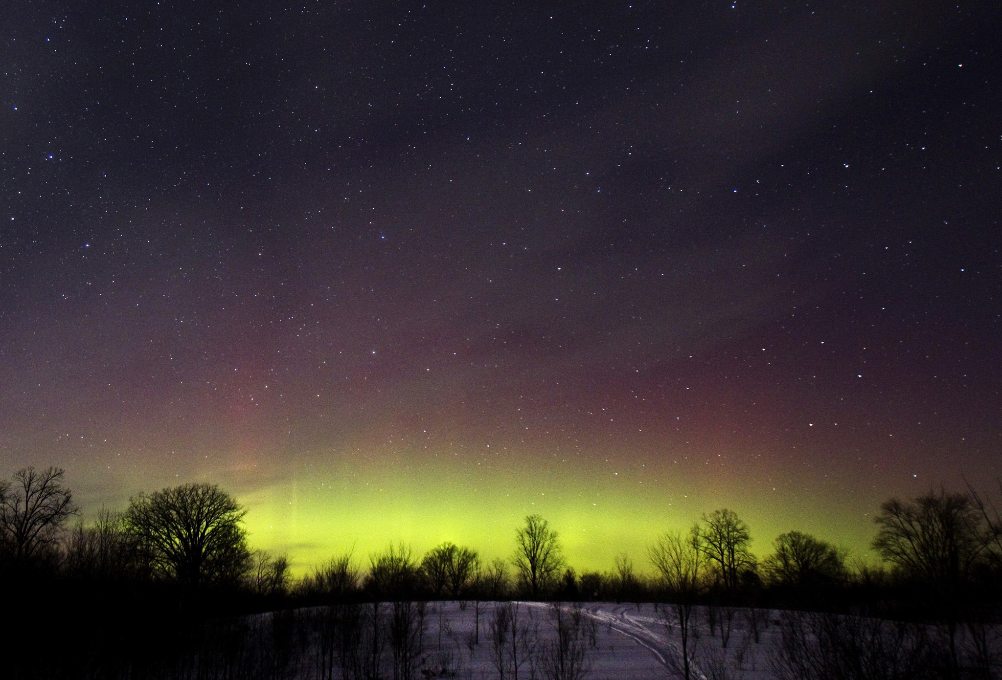 The glow of the Aurora Borealis, or Northern Lights, is seen in the horizon in Kawartha Lakes...The glow of the Aurora Borealis, or Northern Lights, is seen in the horizon in the Kawartha Lakes region, southern Ontario February 23, 2015. The colorful cosmic display of the northern lights is rarely seen in Ontario. REUTERS/Fred Thornhill   (CANADA - Tags: ENVIRONMENT)