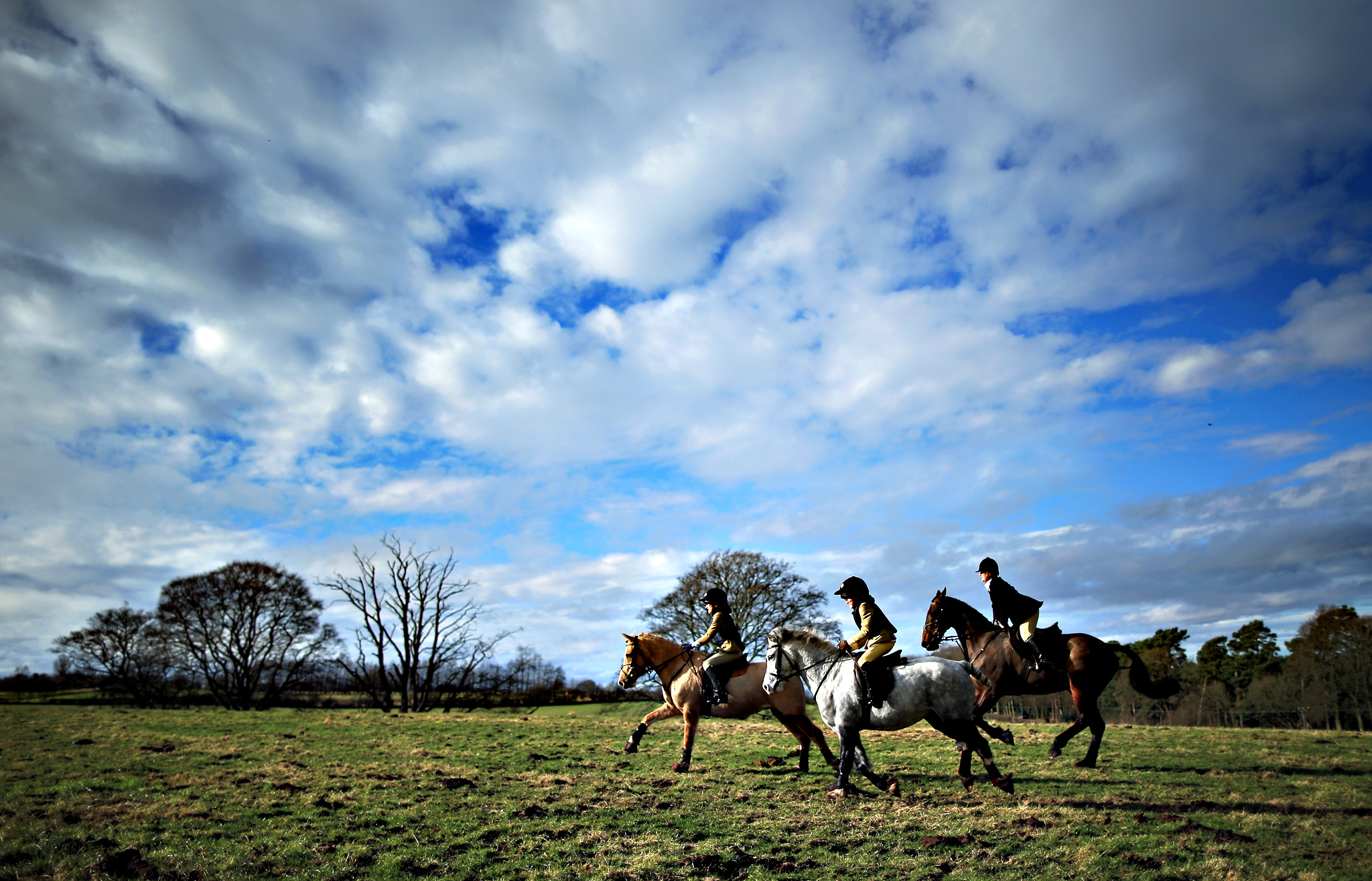 The horse and hounds of the Cheshire Forest Hunt prepares for a mid-week hunt on the 10th anniversary of the ban on hunting with hounds on February 18, 2015 in Knutsford, England. The riders and hounds of the Cheshire Forest Hunt set off on a drag hunt through the Cheshire countryside. It is 10 years today since the ban on hunting with hounds came into force after The Hunting Act was approved by parliament after 700 hours of debate in the house.