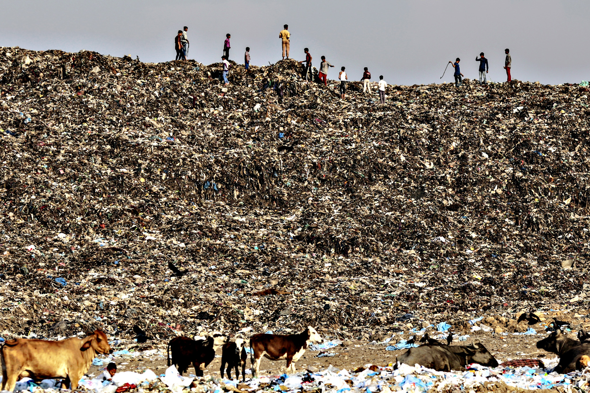 Boys play as cows graze through garbage at the Deonar landfill site in Mumbai, India. Mumbai is running out of space for its waste, and Deonar, Asia's oldest and largest dumpsite, is bursting. Each day, more than 500 trucks line up along a two-lane dirt road in an eastern suburb, waiting to add to a mountain of refuse tall enough to submerge the White House twice over