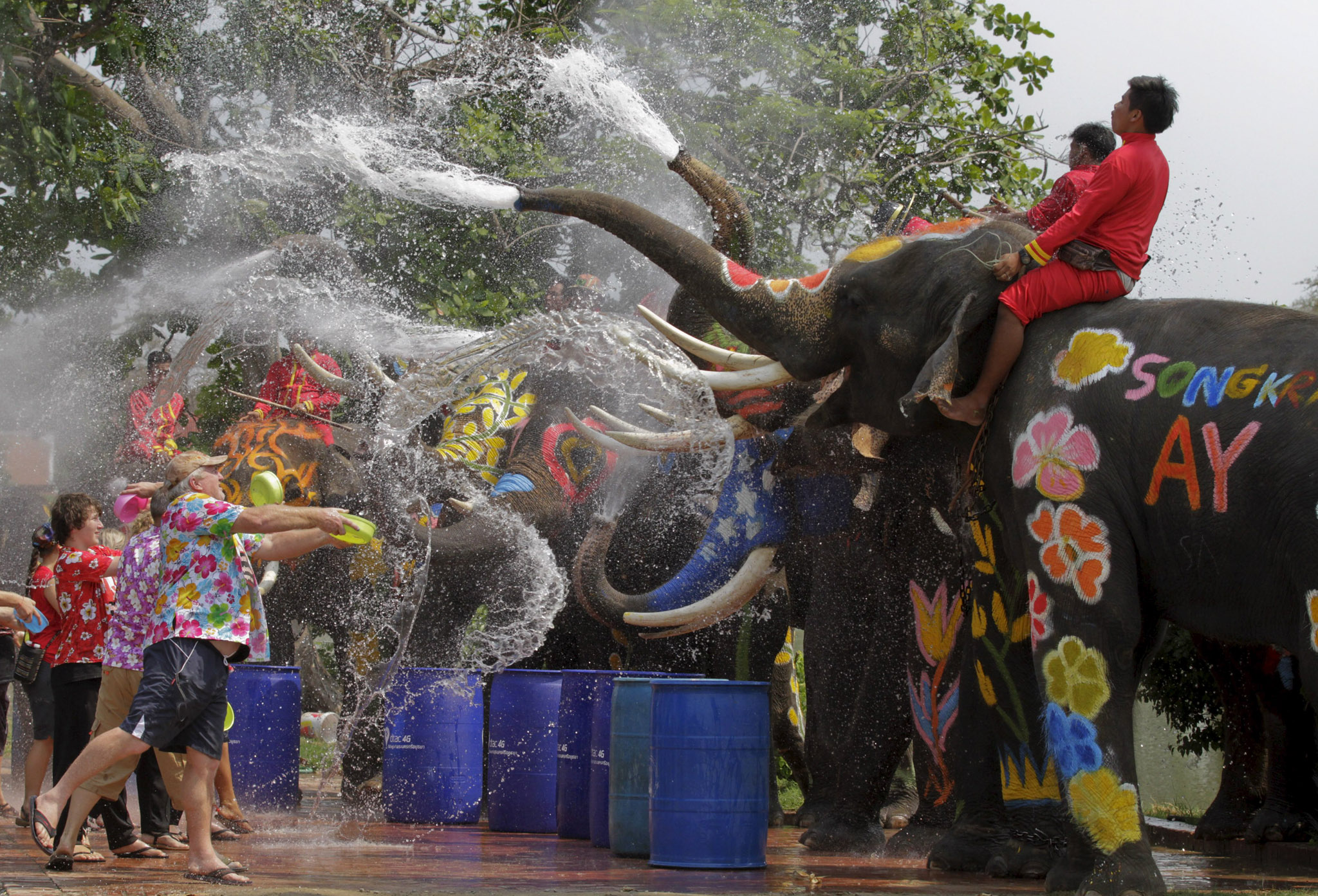 Elephants spray tourists with water in celebration of the Songkran water festival in Thailand's Ayutthaya province, north of Bangkok