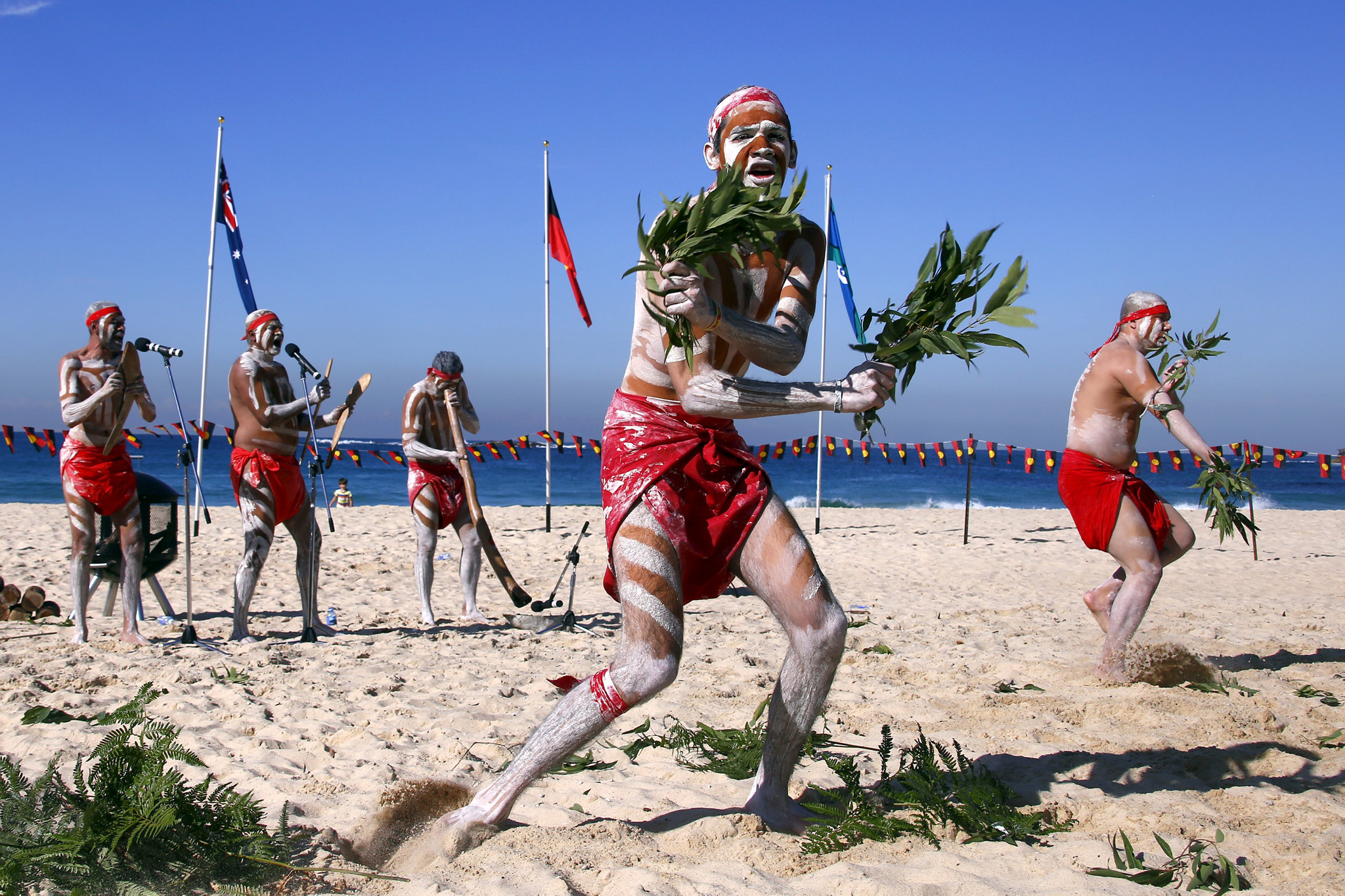 Traditonally dressed Australian Aboriginal performers hold gum-tree leaves as they dance on Sydney's Coogee Beach as they participate in a 'Corroboree'