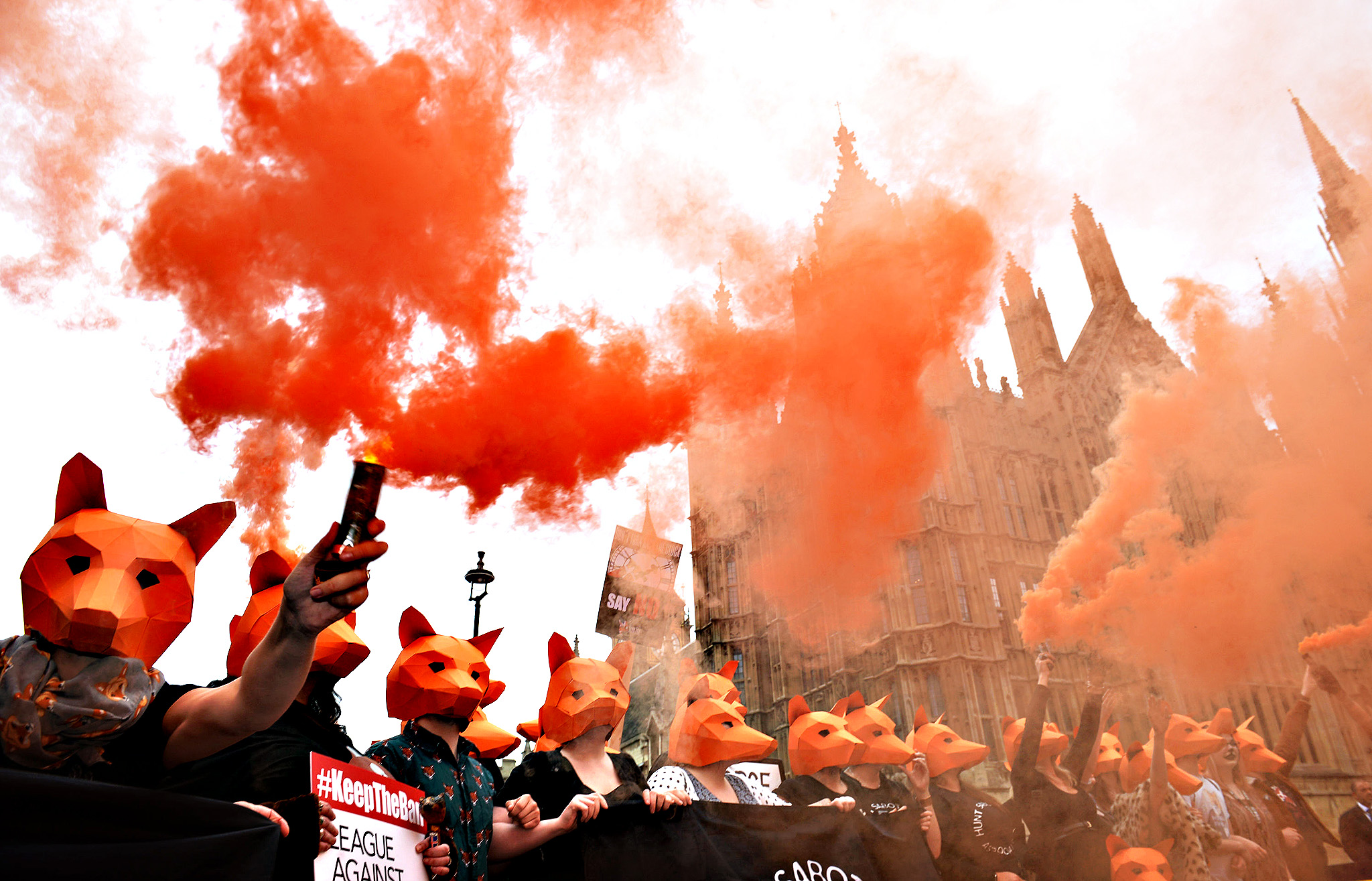 "Anti-foxhunting protesters let off flares outside the Houses of Parliament, London, as a vote to relax the fox-hunting ban in England and Wales has been postponed after the Scottish National Party's decision to take part in the division made defeat almost certain. PRESS ASSOCIATION Photo. Picture date: Tuesday July 14, 2015. The controversial vote, scheduled for Wednesday, would have brought the law south of the border in line with that in Scotland, where an unlimited number of dogs can be used to ""flush out"" a fox to be shot, compared to just two in England and Wales."