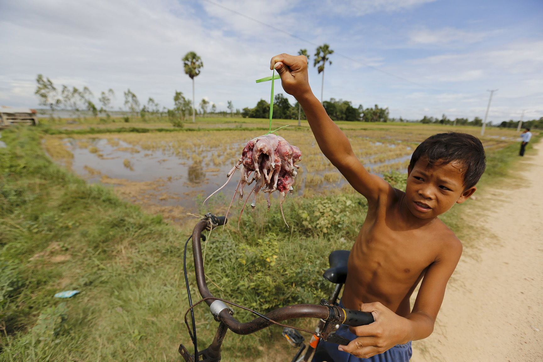 A Cambodian child poses with rats he skinned after catching them in a rice field in Takeo province