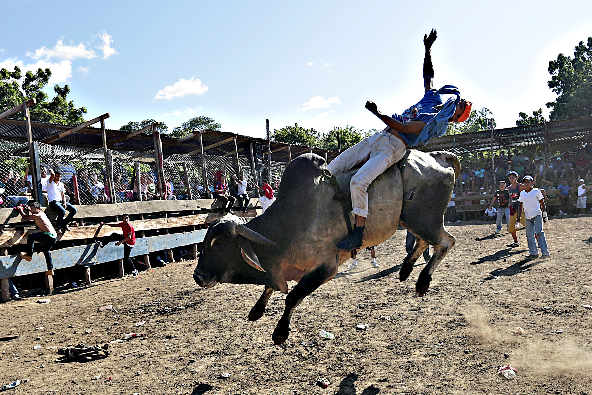 A man rides a bull during festivities honouring the capital's patron saint Santo Domingo de Guzman in Managua, Nicaragua
