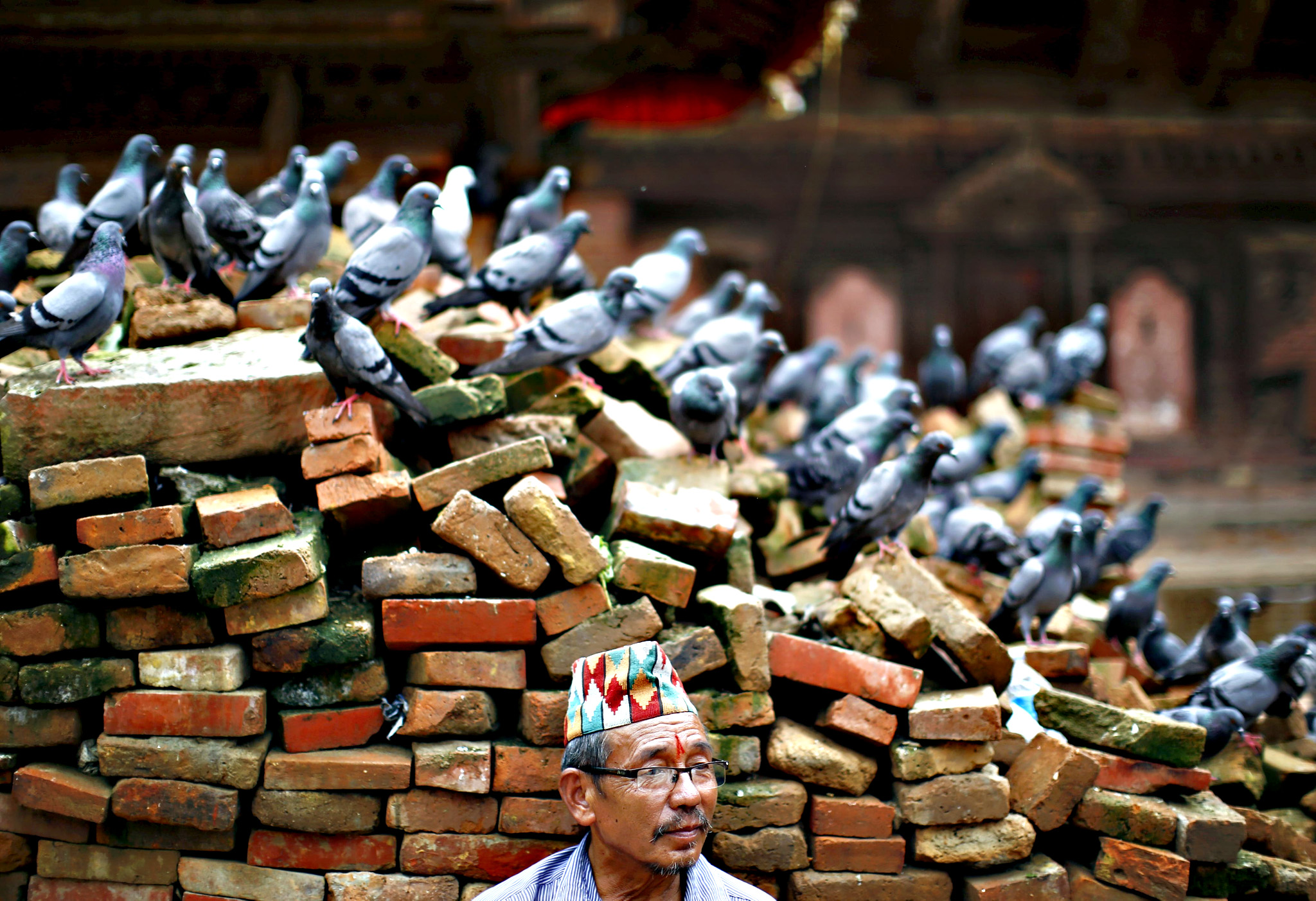 Man sits next to pigeons resting on a pile of bricks collected from the collapsed temple damaged during the earthquake at Hanumandhoka Durbar Square in Kathmandu...A man sits next to pigeons resting on a pile of bricks collected from the collapsed temple damaged during the earthquake at Hanumandhoka Durbar Square in Kathmandu, Nepal August 20, 2015