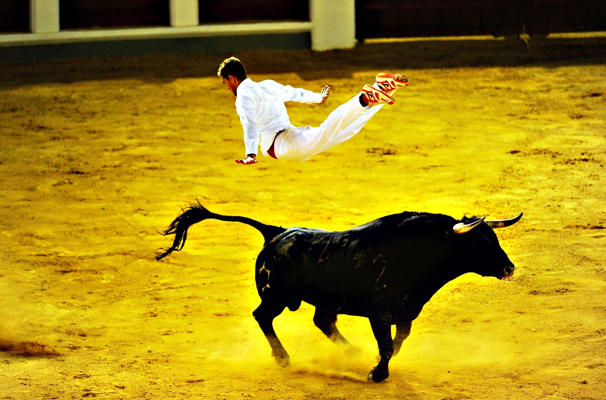 Fabien Napias of the French Recortadores company Passion Saltador leaps over a charging bull at the end of the Liga de Corte Puro finals at the Plaza de Toros in Valladolid, Spain. The art consists of leaping, diving and somersaulting over charging bulls