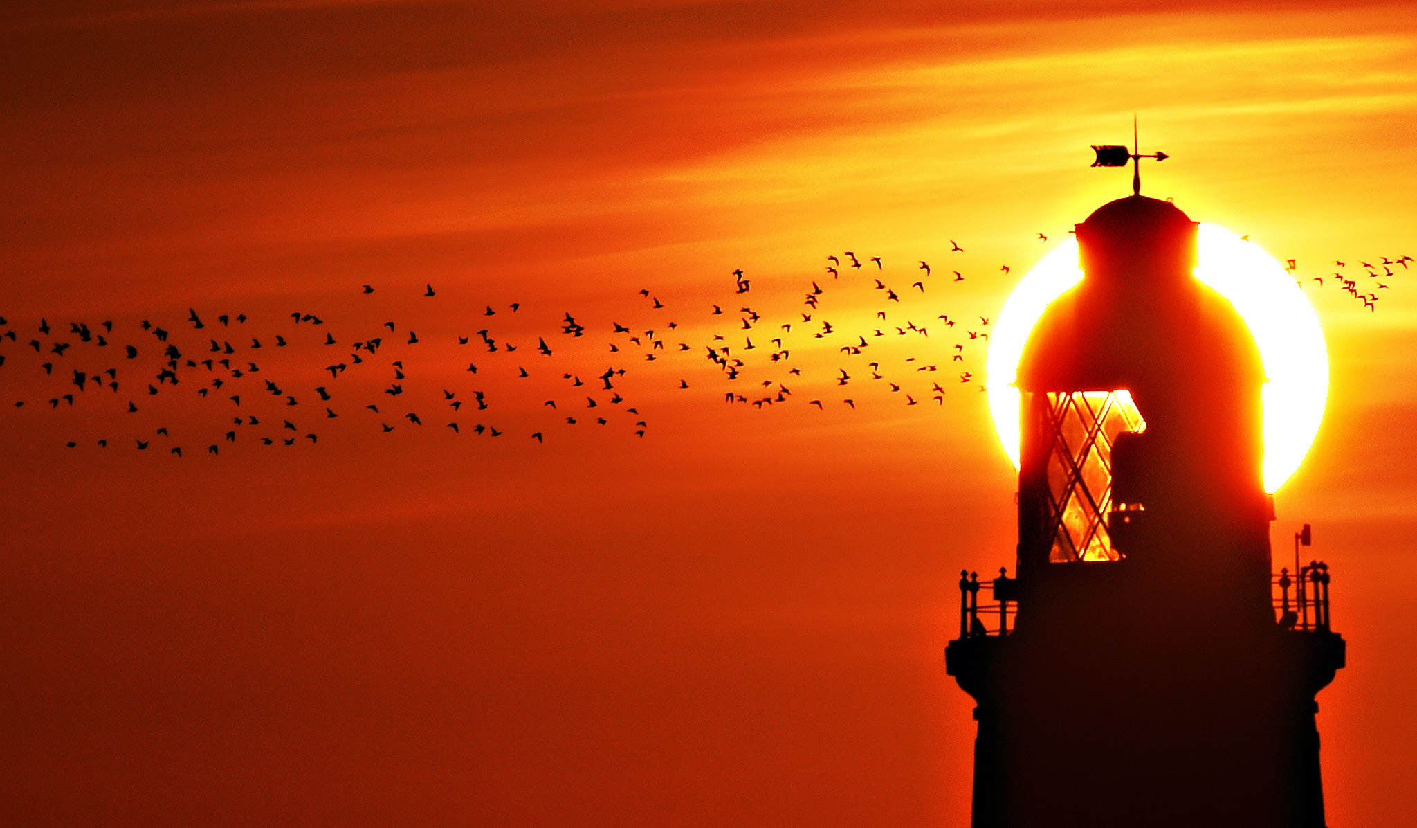 The sun rises over St Mary's Lighthouse in Whitley Bay on the Northumberland coast as a flock of Lapwing seabirds fly past. PRESS ASSOCIATION Photo. Picture date: Wednesday September 30, 2015
