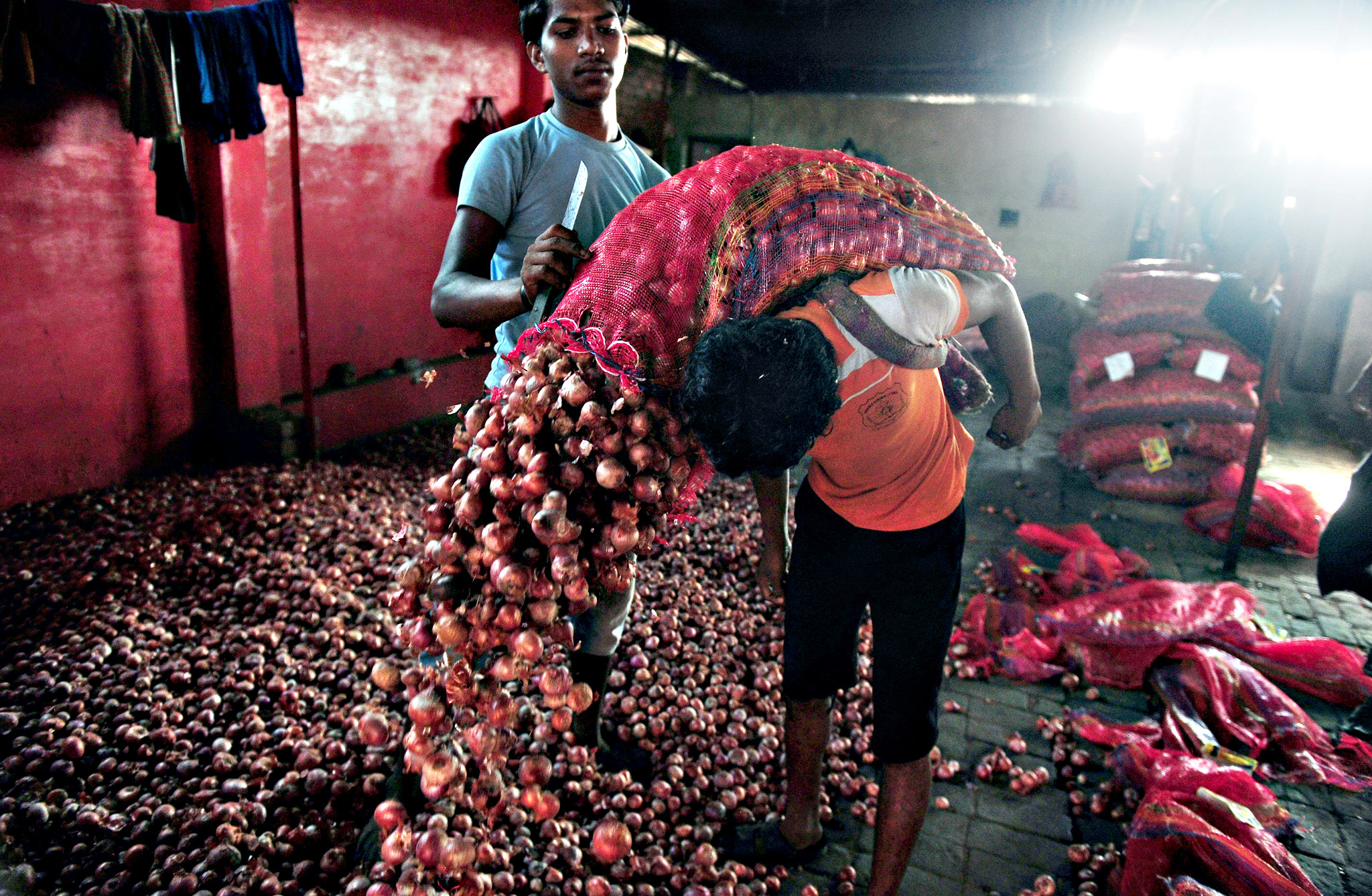 Indian labourers unload onions for sorting at Mundera wholesale market in Allahabad on September 9, 2015