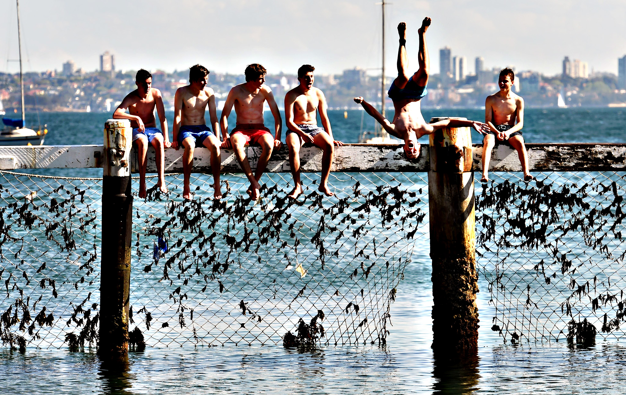 """Children play on a shark net at Little Manly Cove as shark experts assess cutting-edge technologies to counter attacks at a summit in Sydney on September 29, 2015, following an """"unprecedented"""" spate of encounters in eastern Australia this year that has left one dead and seven injured.  Australia is home to one of the world's highest incidents of shark attacks, with the two-day summit, which include researchers from the US and South Africa, organised in part to address community fears after the recent incidents on the north coast of the most populous state New South Wales"""