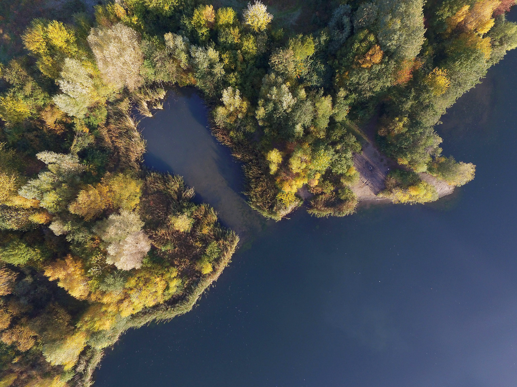 Morning sun...epa05007143 An aerial view of autumn trees along the shore of a quarry pond in Cologne,†Germany, 02 November 2015.  EPA/HENNING KAISER
