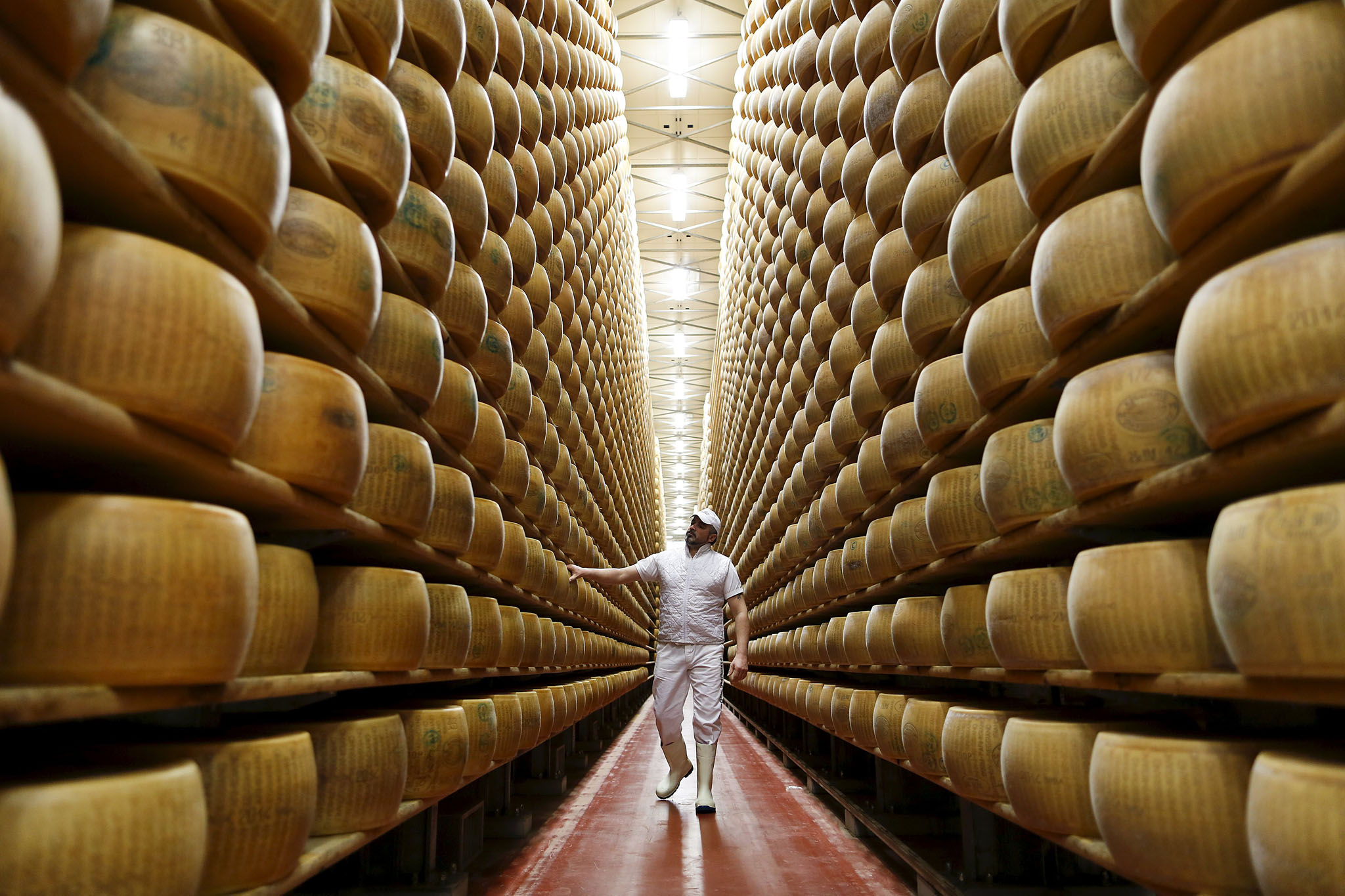 Worker inspects wheel of Parmesan cheese at storehouse shelf 4 Madonne Caseificio dell'Emilia dairy cooperative in Modena, Italy